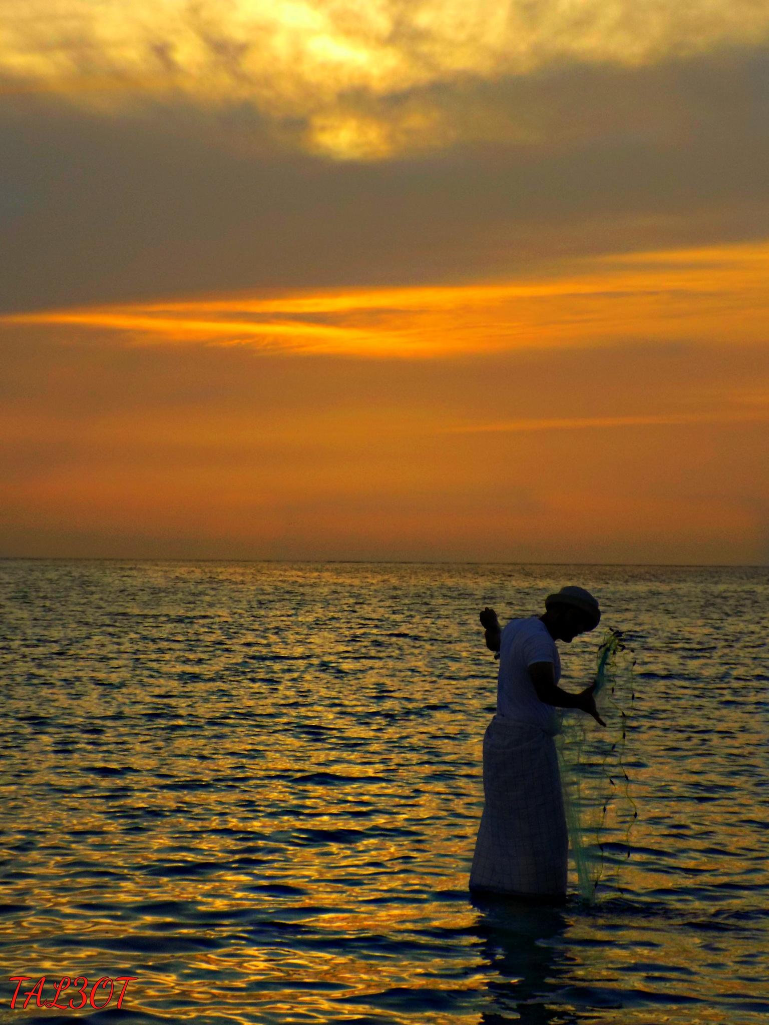 Fisherman by Tal3ot