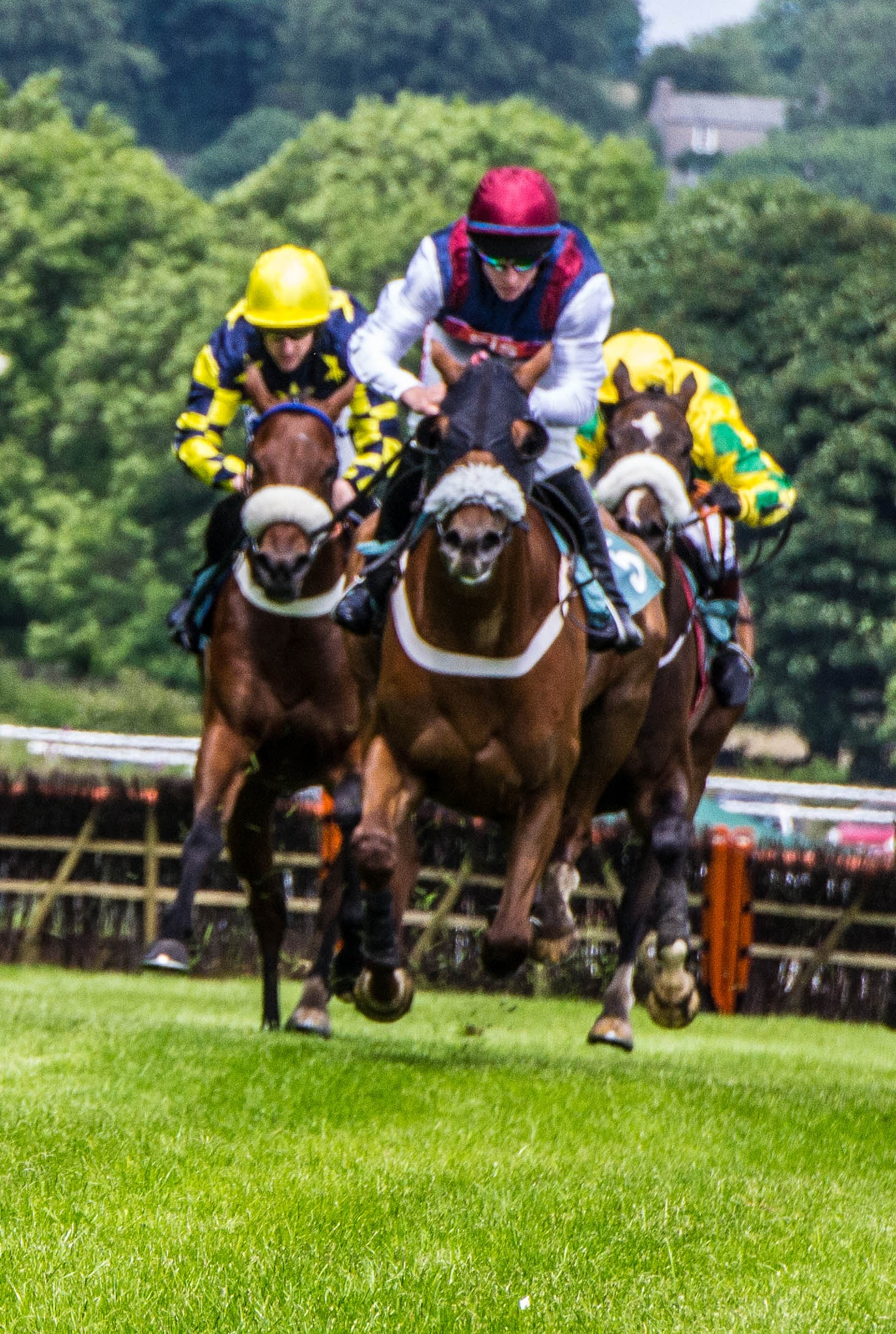 Cartmel races from the woodside 4 by RedversPhotographic