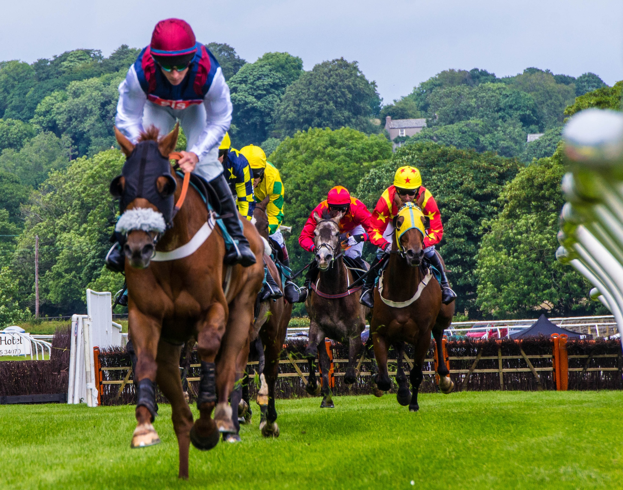 Cartmel races from the woodside 3 by RedversPhotographic