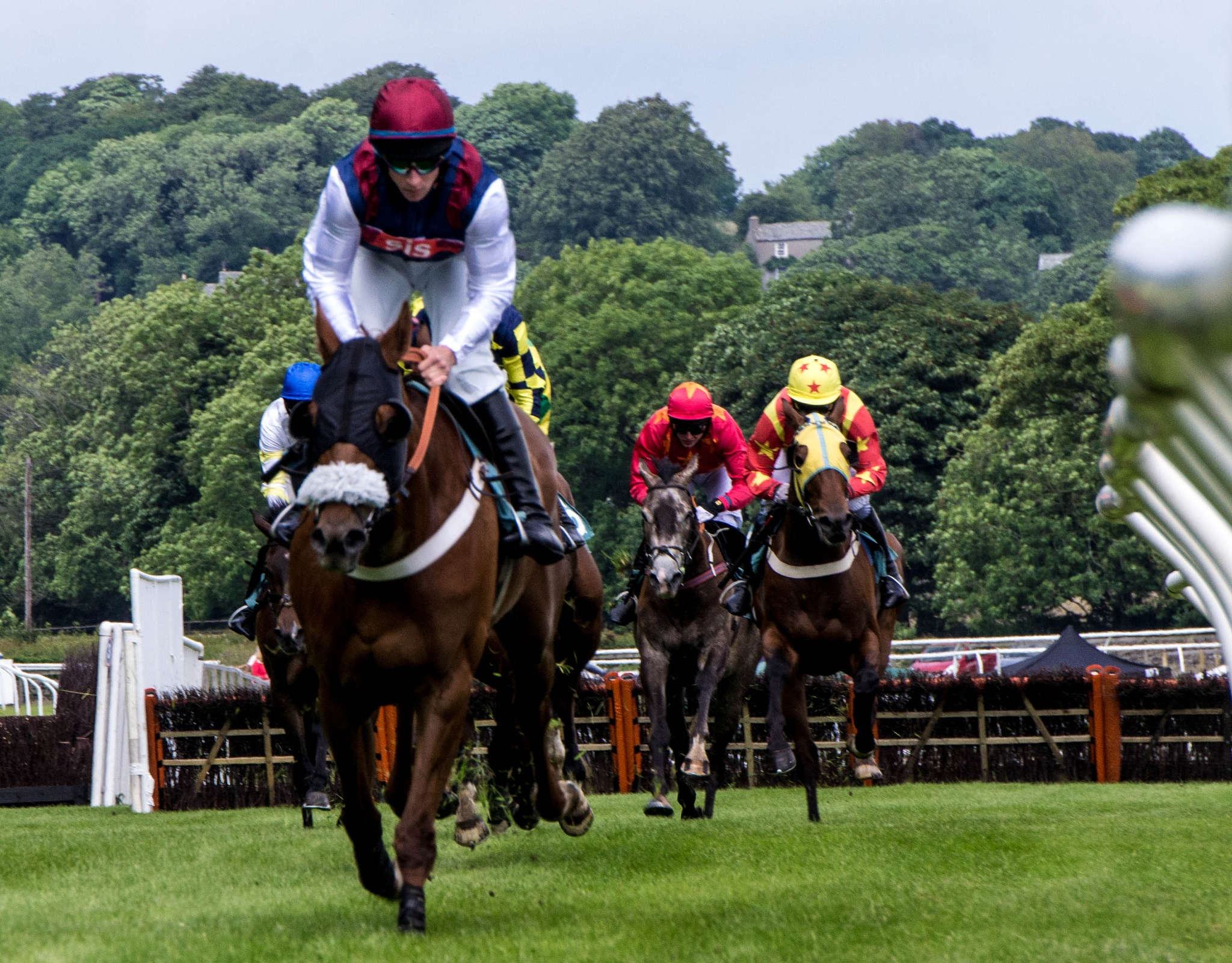 Cartmel races from the woodside 1 by RedversPhotographic