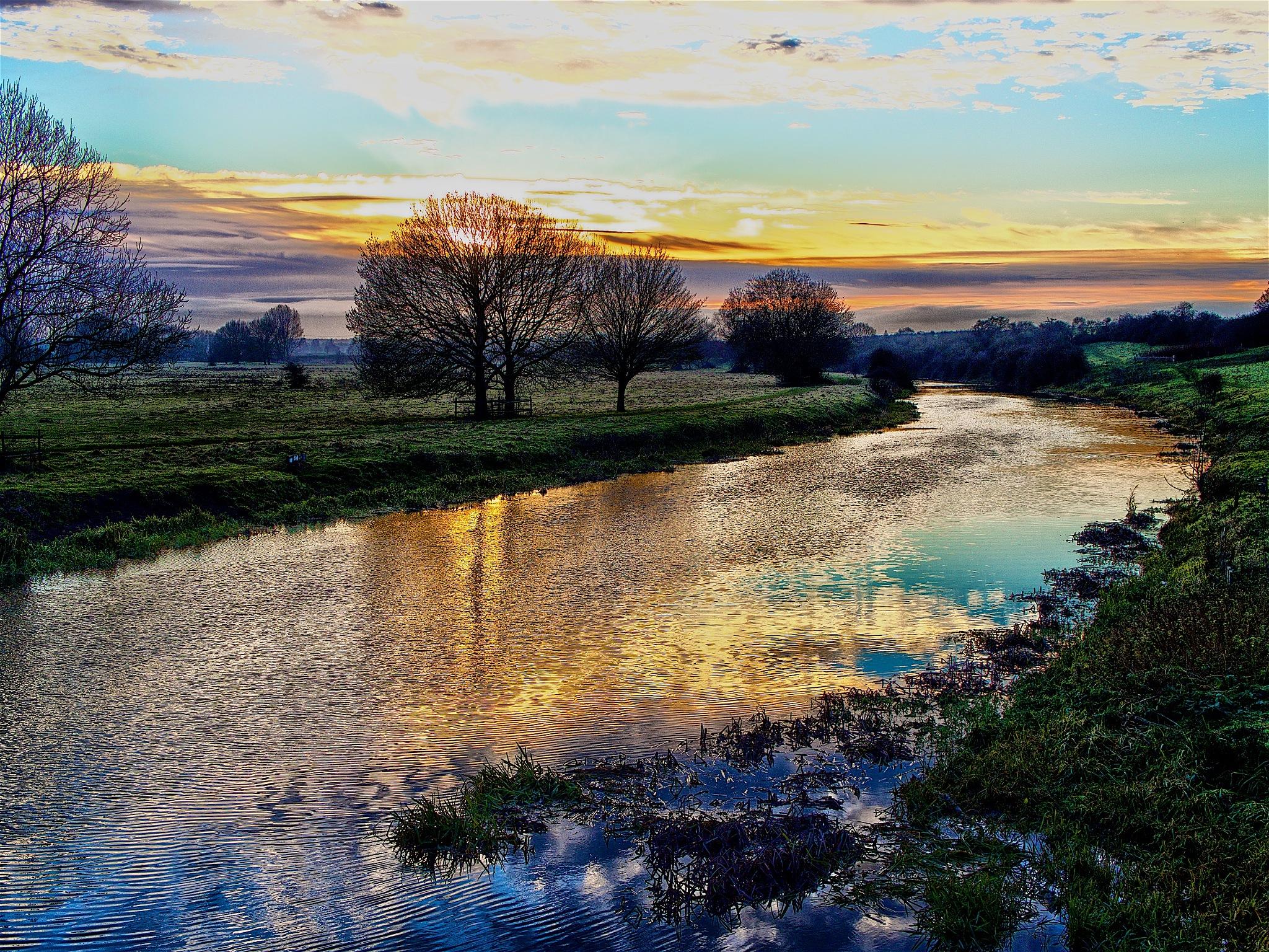 Nene valley 4 by Tony Otley