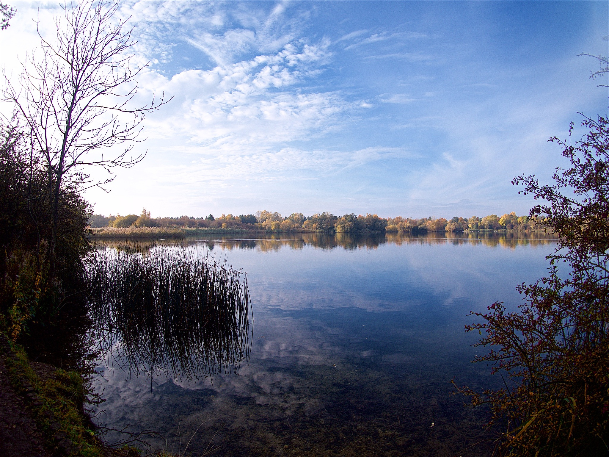 Lake by Tony Otley