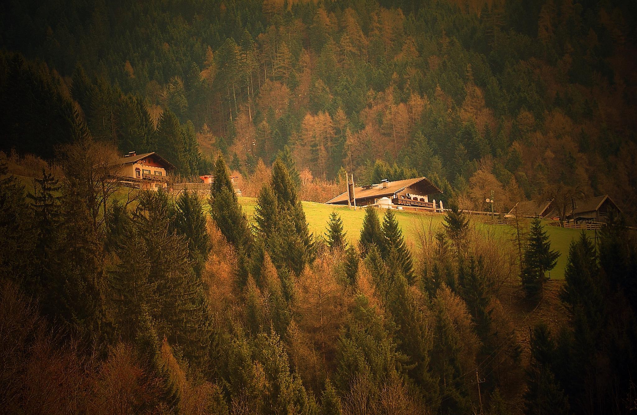 Austria by mimicahalkijevic
