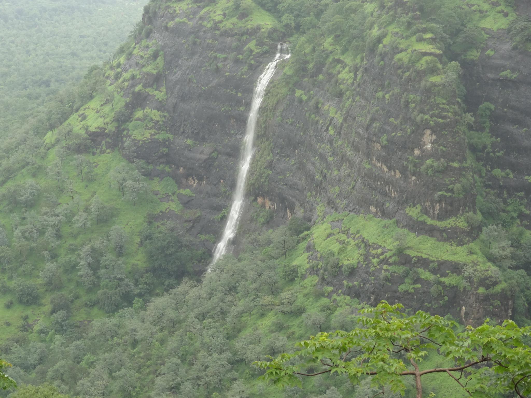 Waterfall  by Narayan Kowlagi