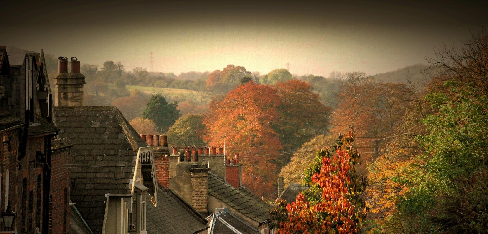 Autumn Air by badger4071