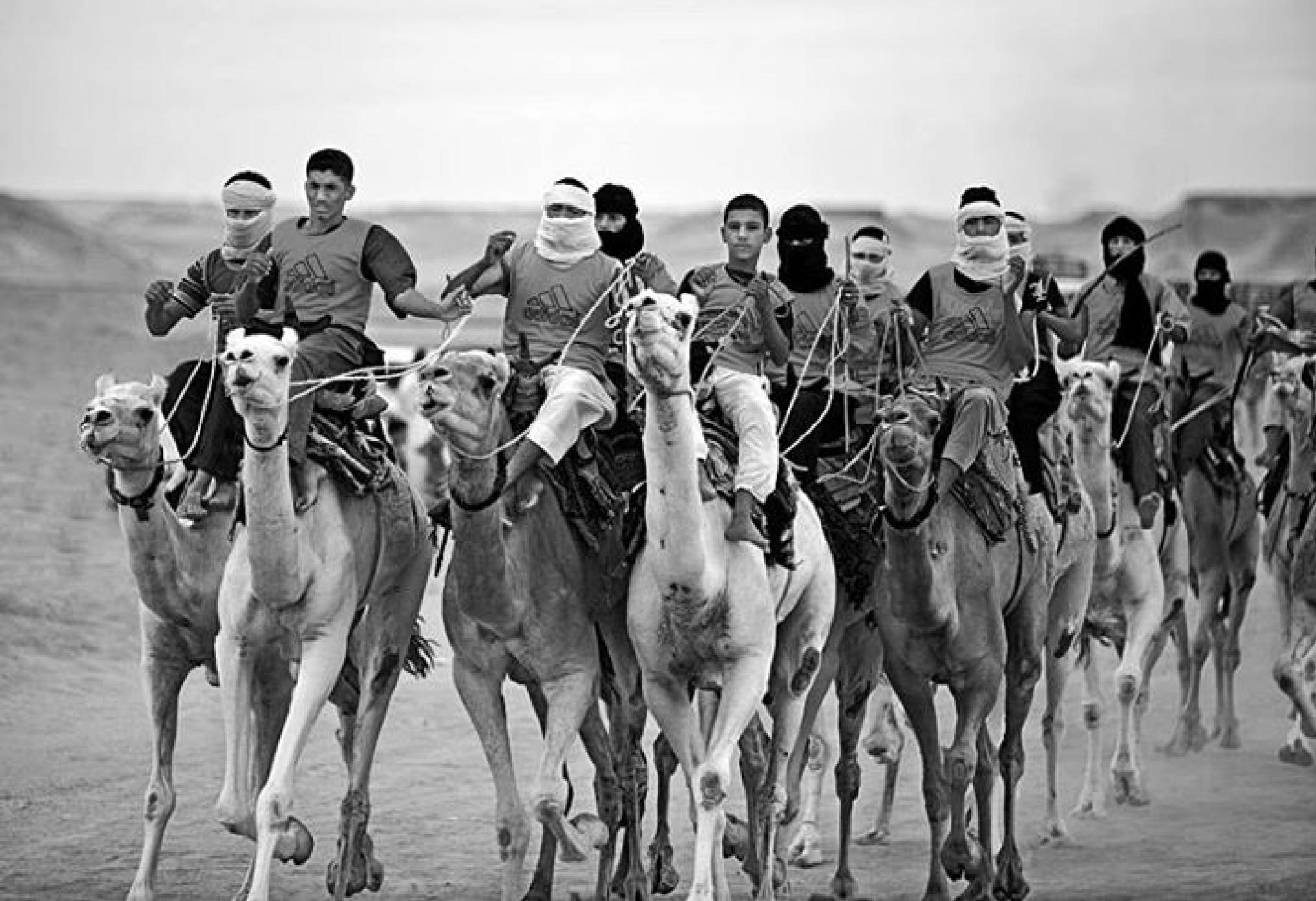 Course de chameaux by Bachir Fourar