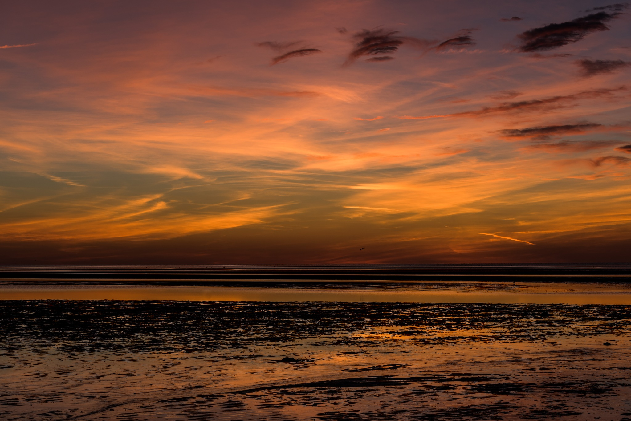 sunset artistry at lowtide by Todd Hyde