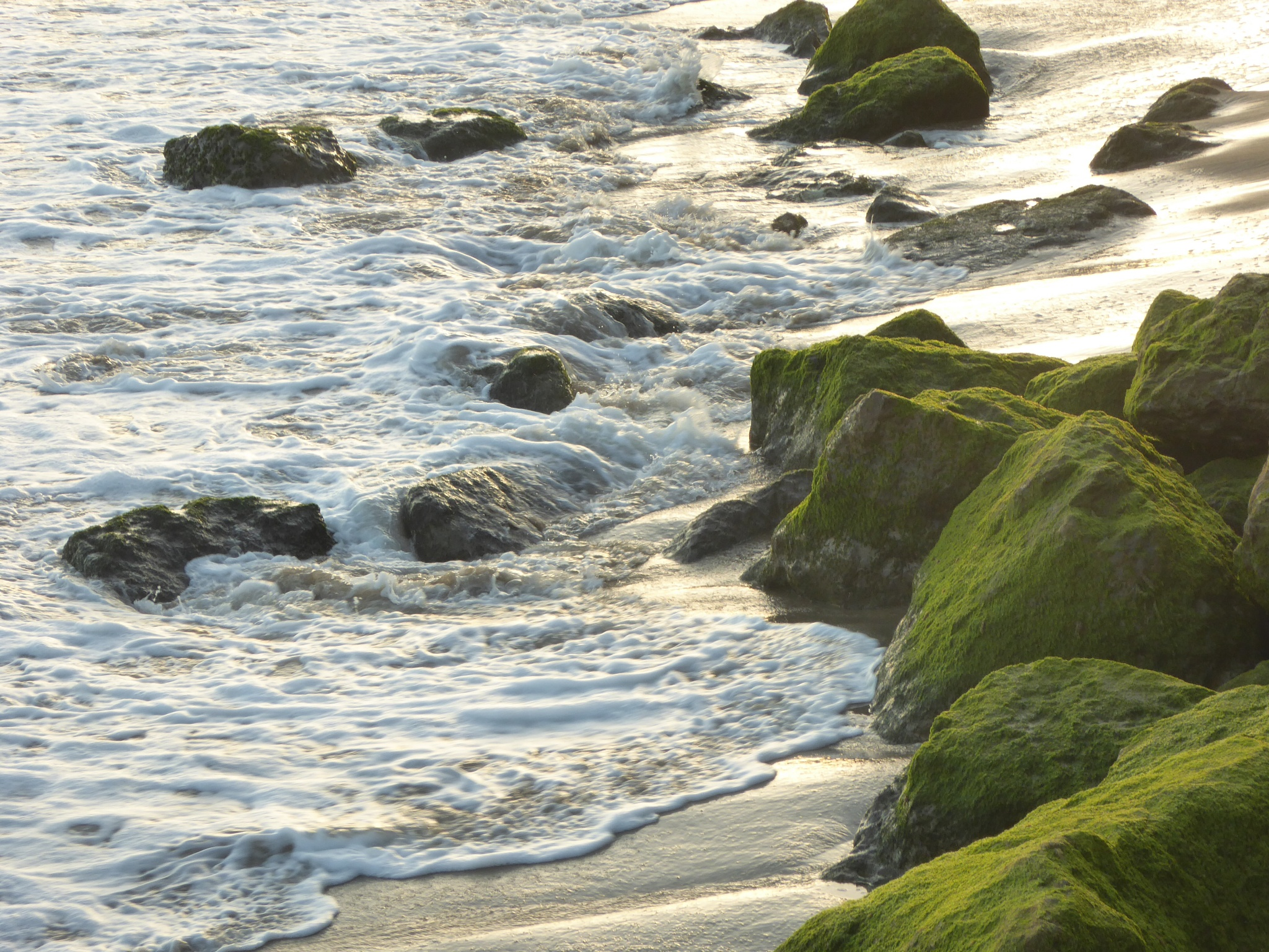Photo in Sea and Sand #usa #california #beach #home #sand #rocks