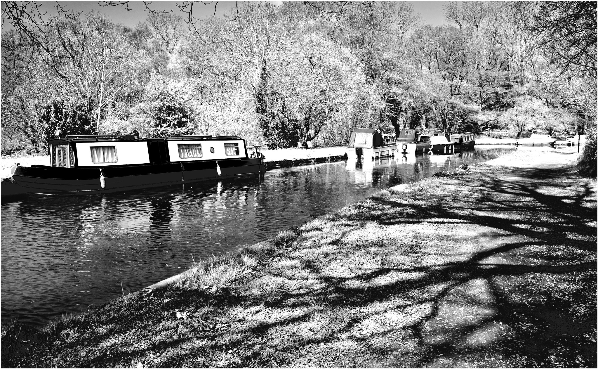 Brecon canal by edwinphillips