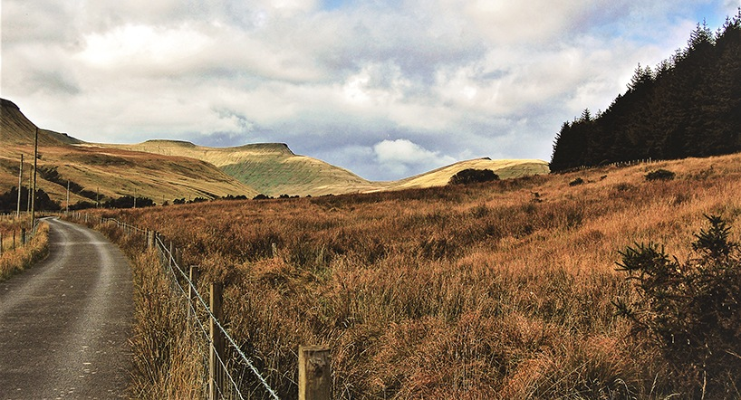 The fenced road by edwinphillips