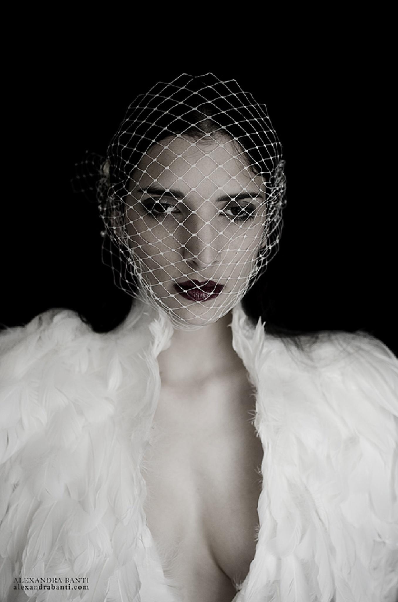 Birdcage by Alexandra Banti