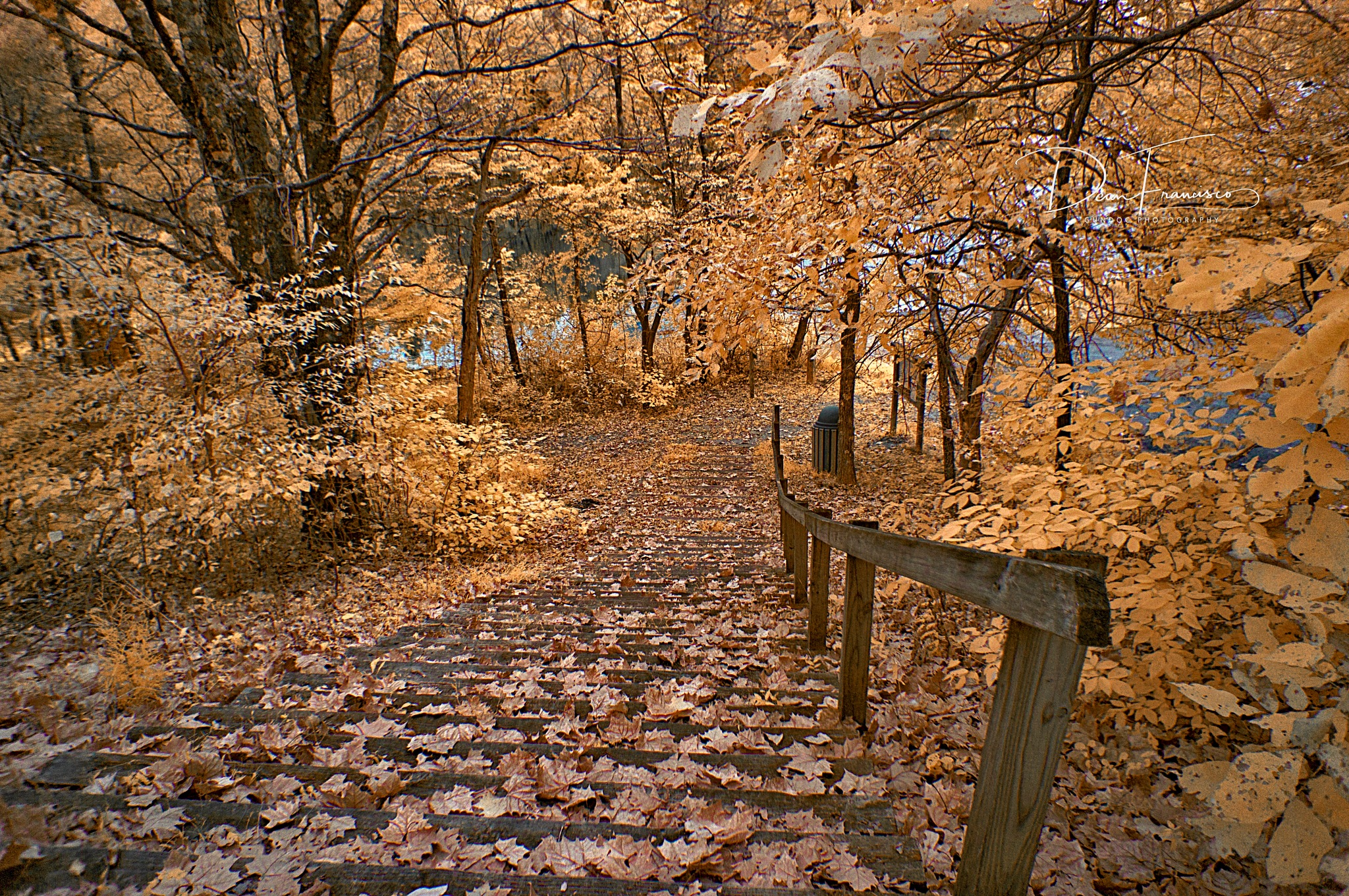 Steps down to Saddle Lake by Dean Francisco