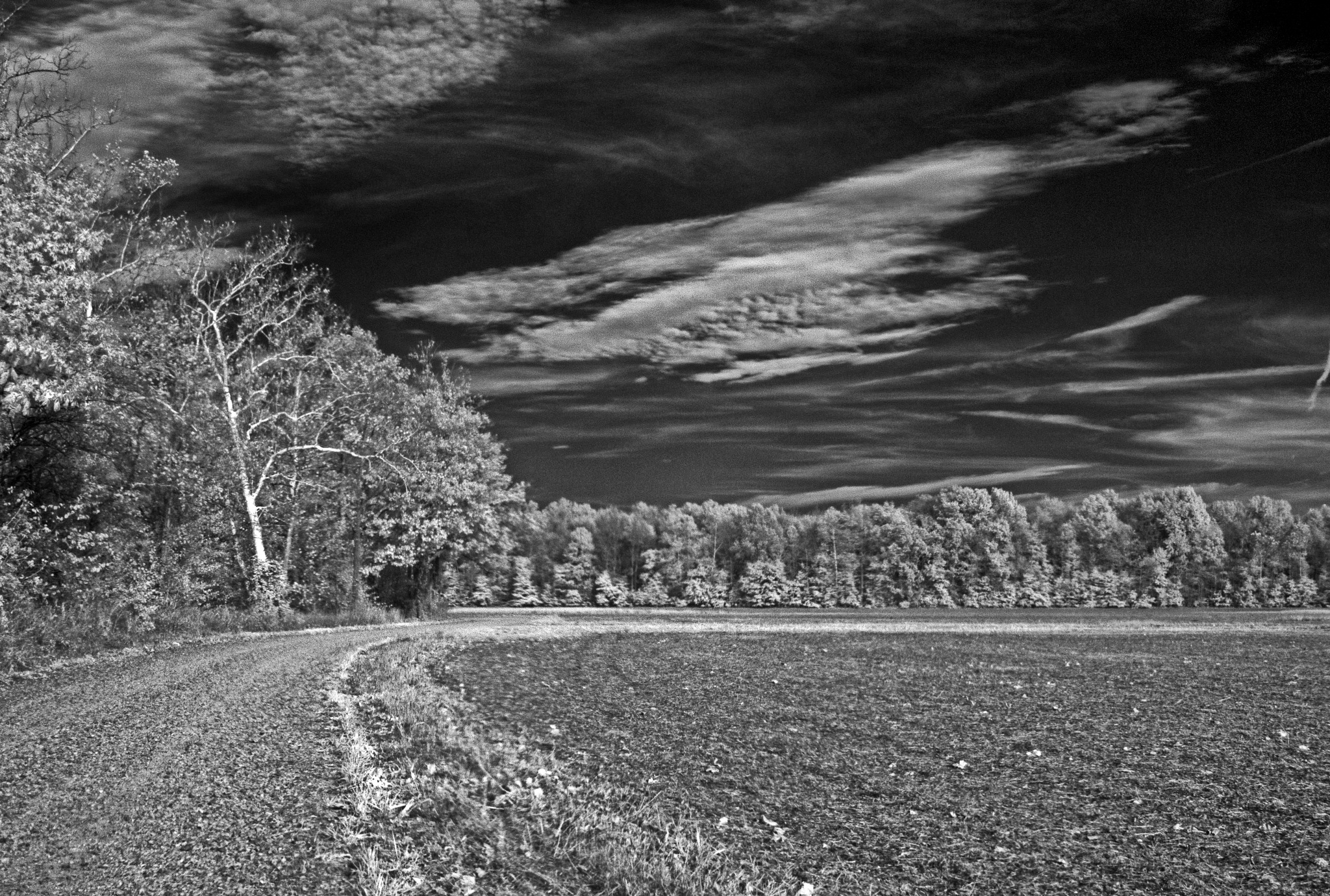 Backroads and Infrared by Dean Francisco