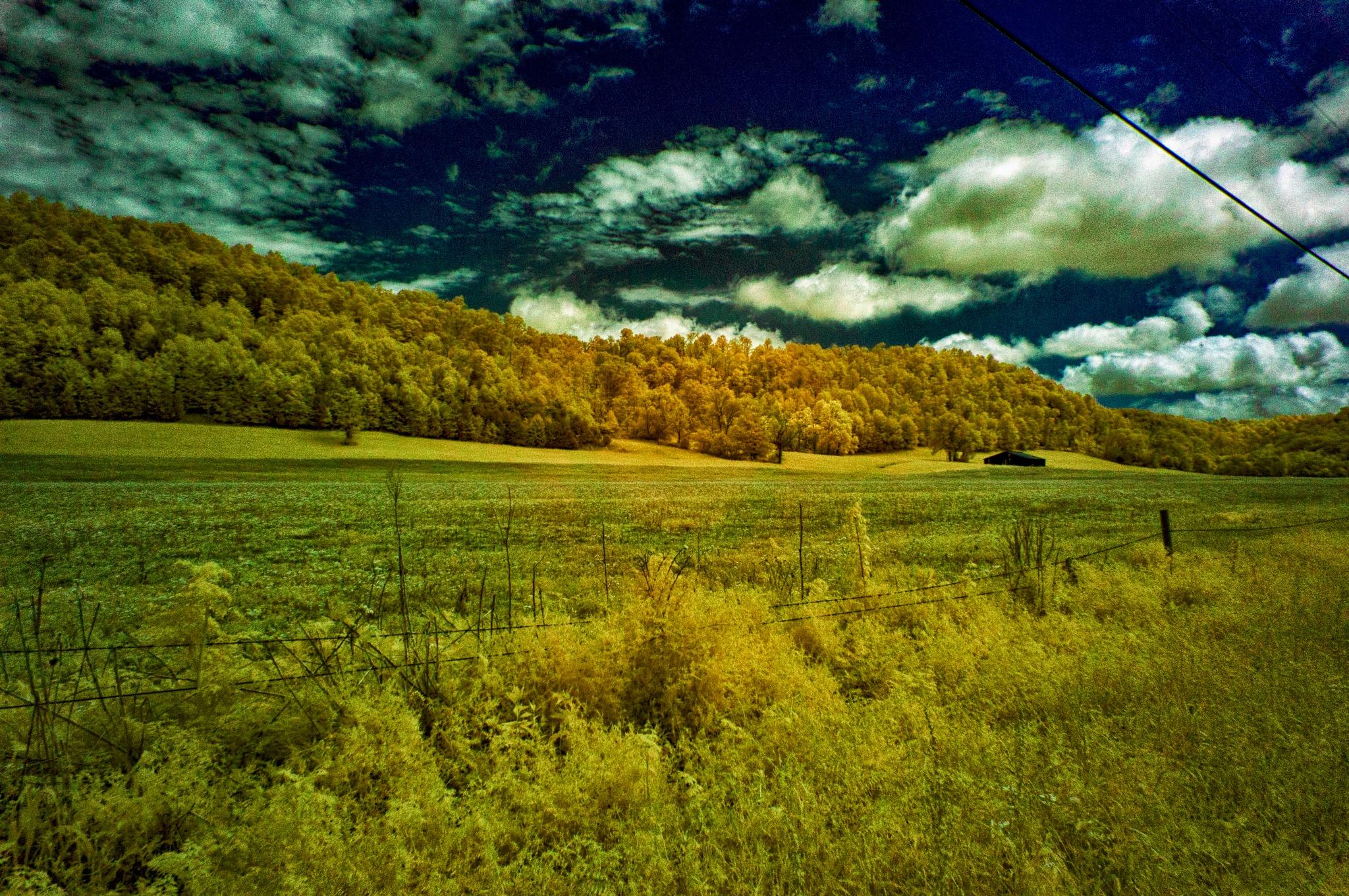 Infrared Landscape by Dean Francisco