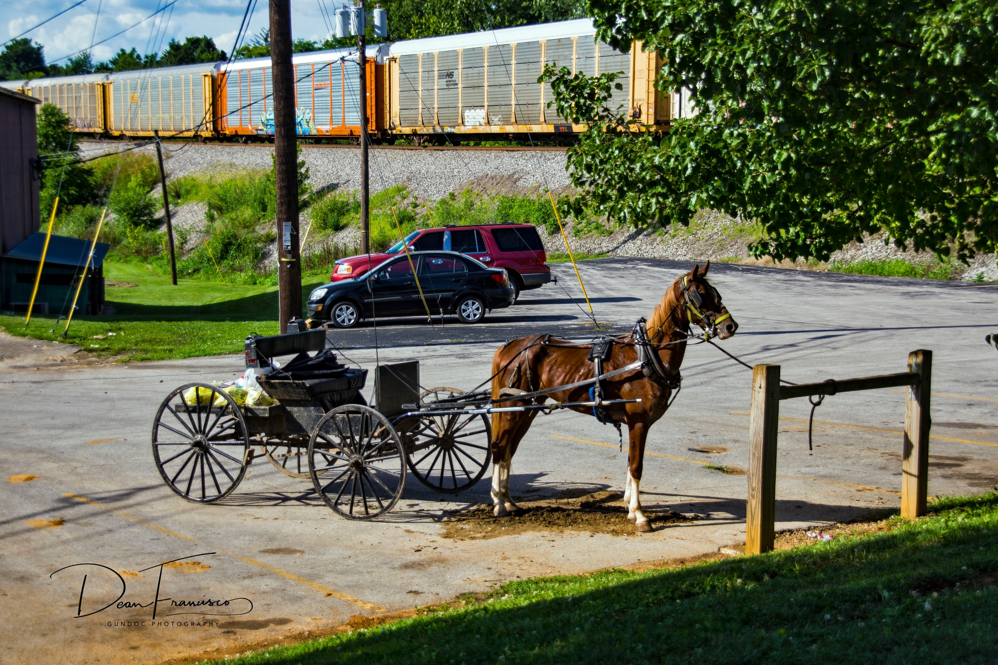 Amish Buggy sport Version by Dean Francisco