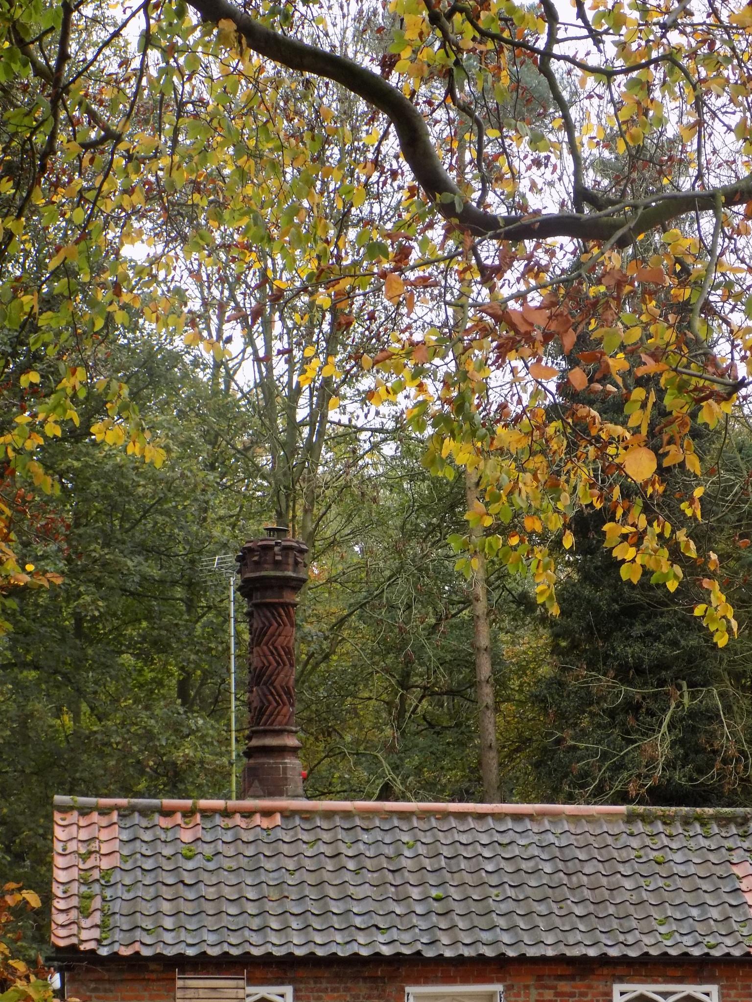 Decorative Chimney by Elaine Twyman