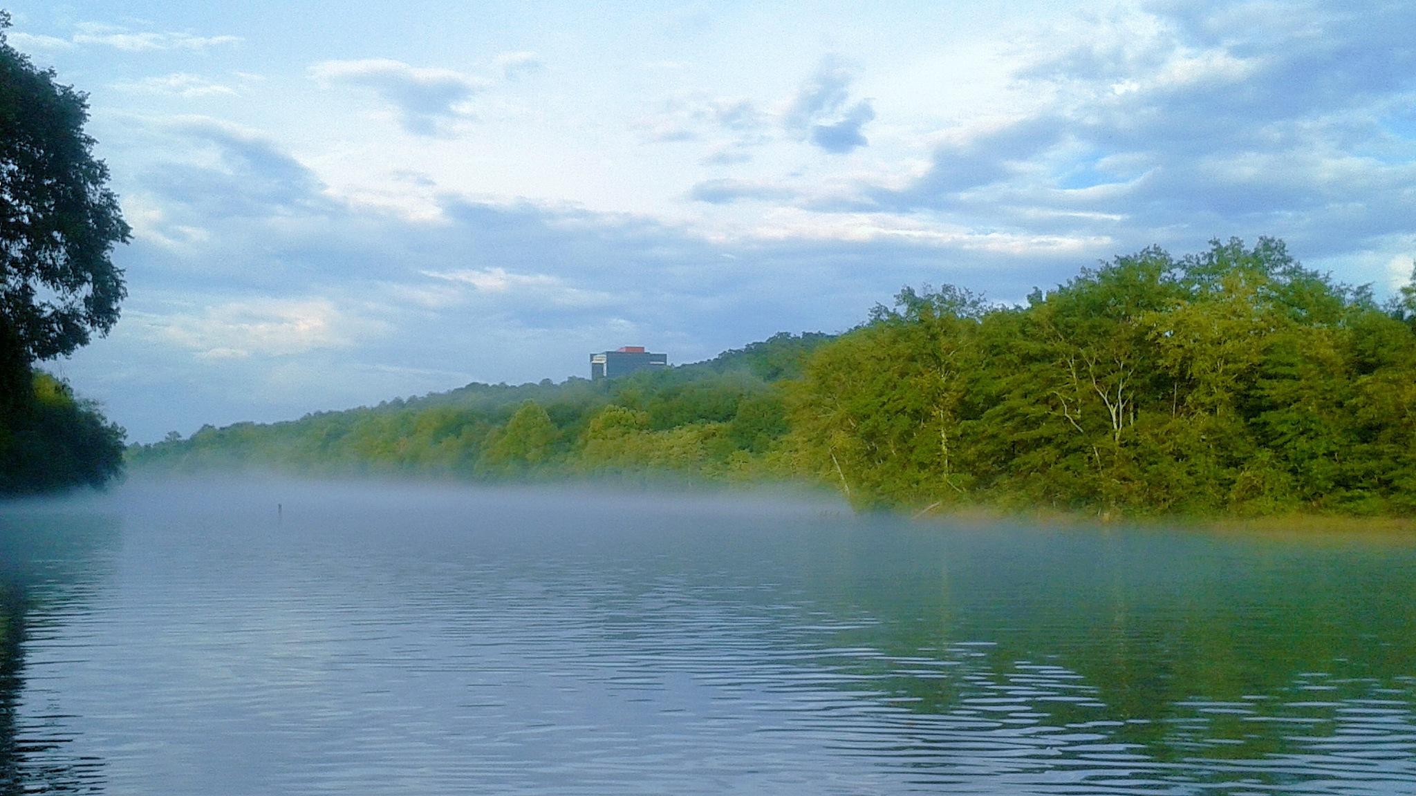 River Fog by Julie Piwaron
