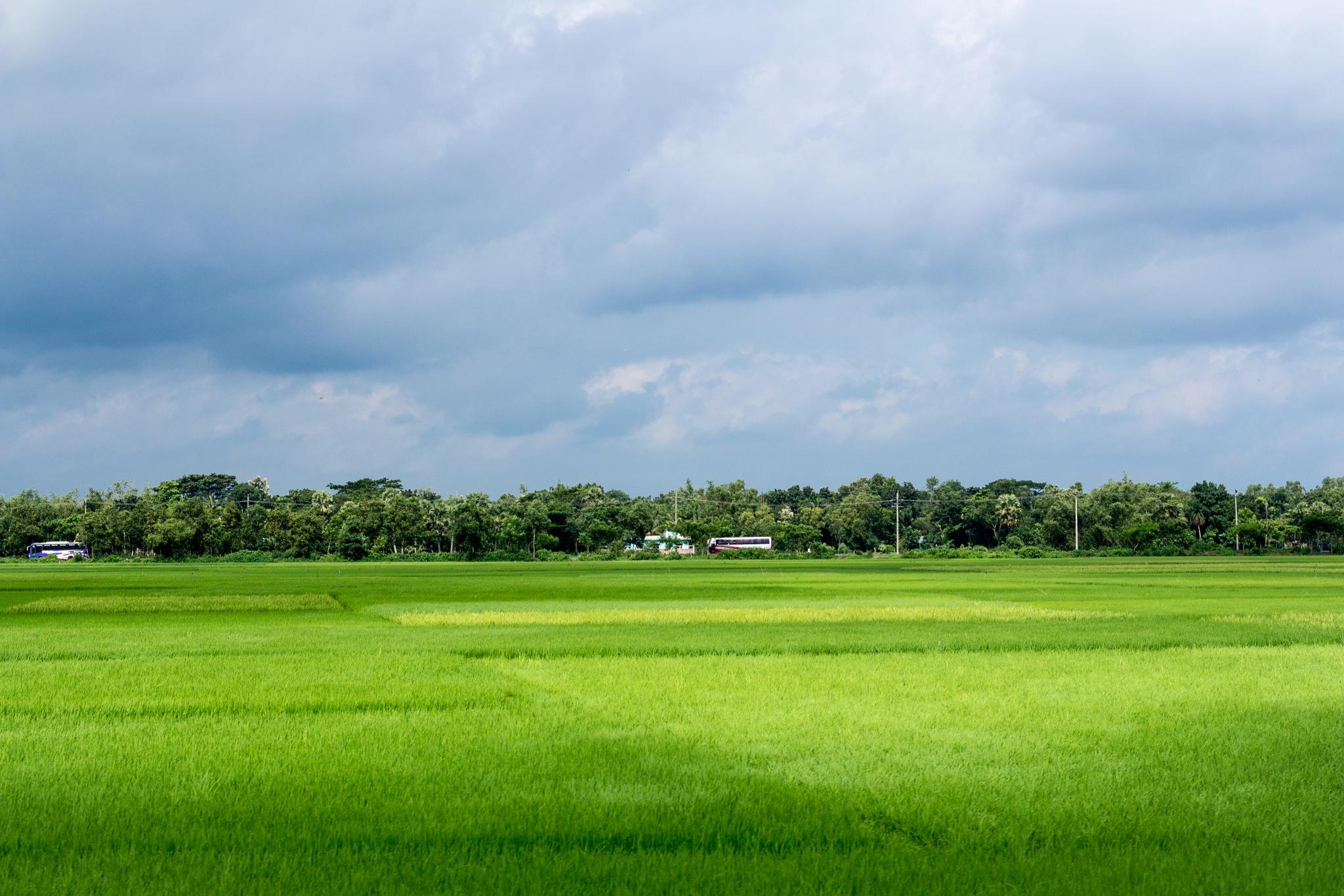 Somewhere in Bangladesh by Rubayet Tanim