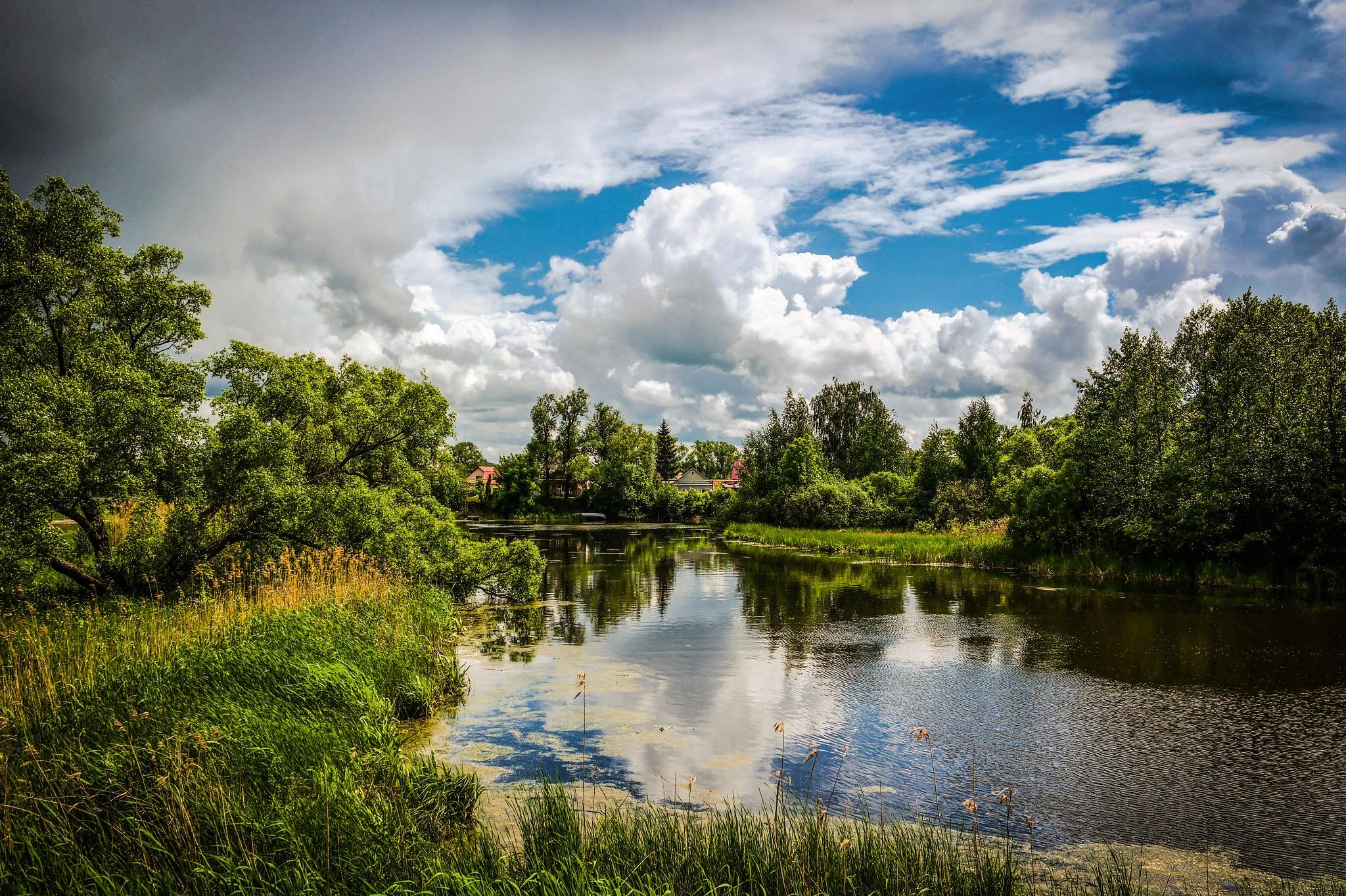 Near the pond............... by Alexandr  Seleznev