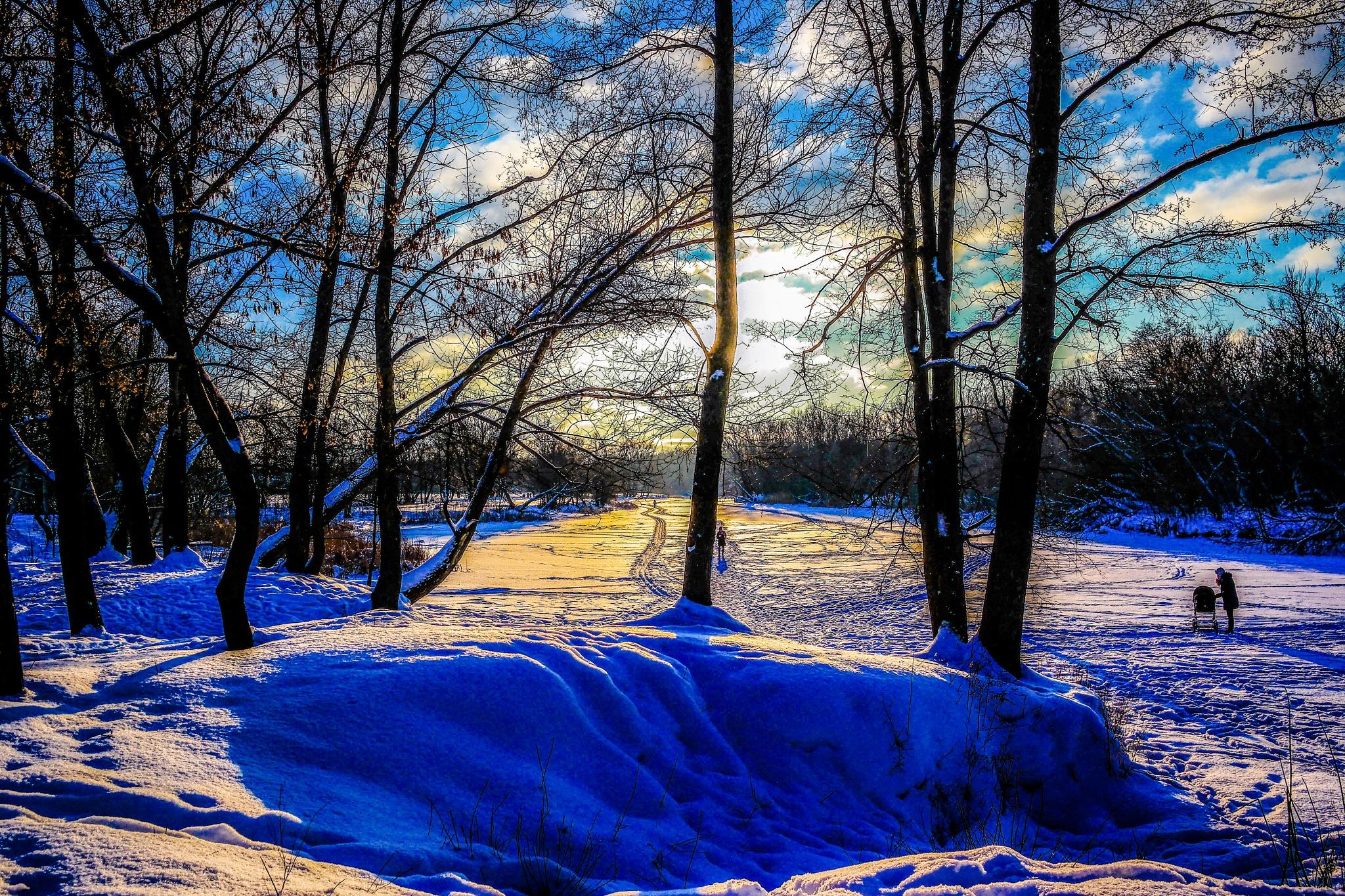 Winter landscape................ by Alexandr  Seleznev