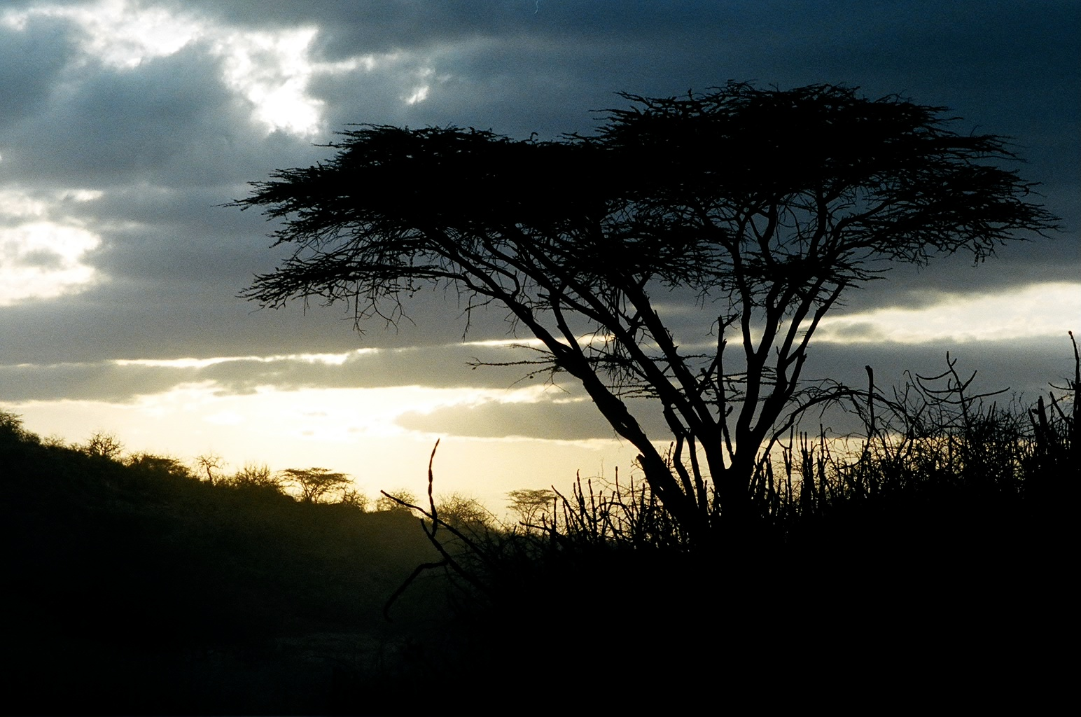 An African Sunset by MichelleEBlack