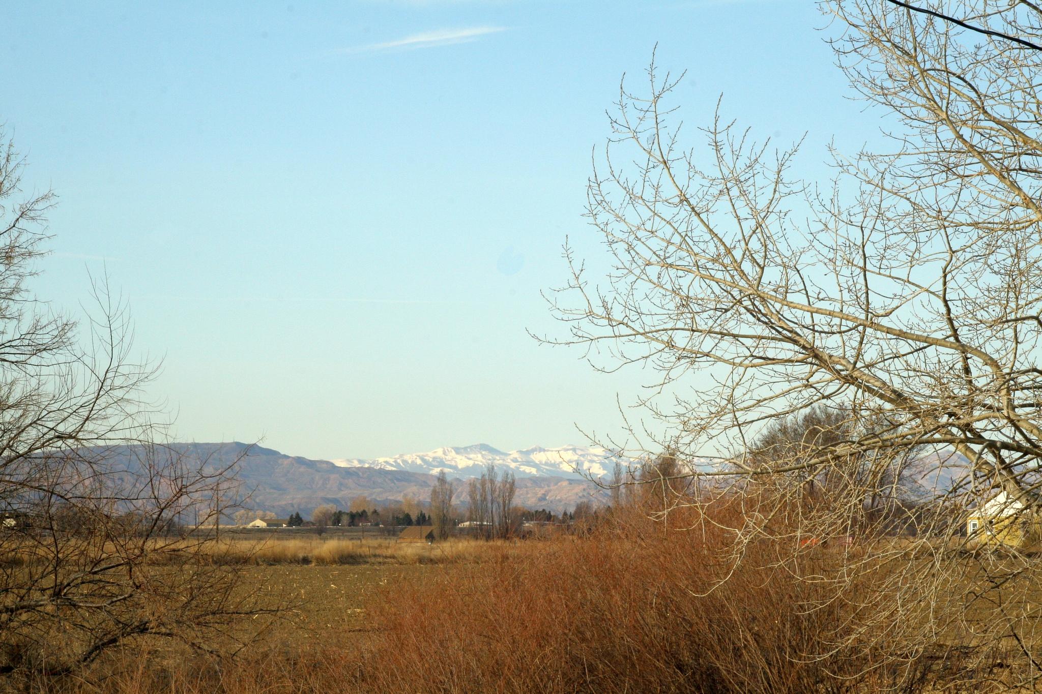 Winter Scene in Wyoming by jimw