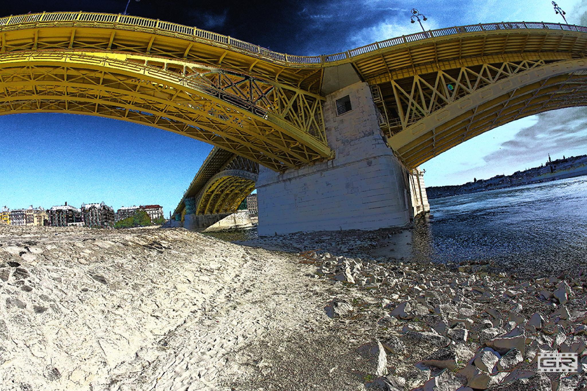 Margaret Bridge by Róbert Gecsényi