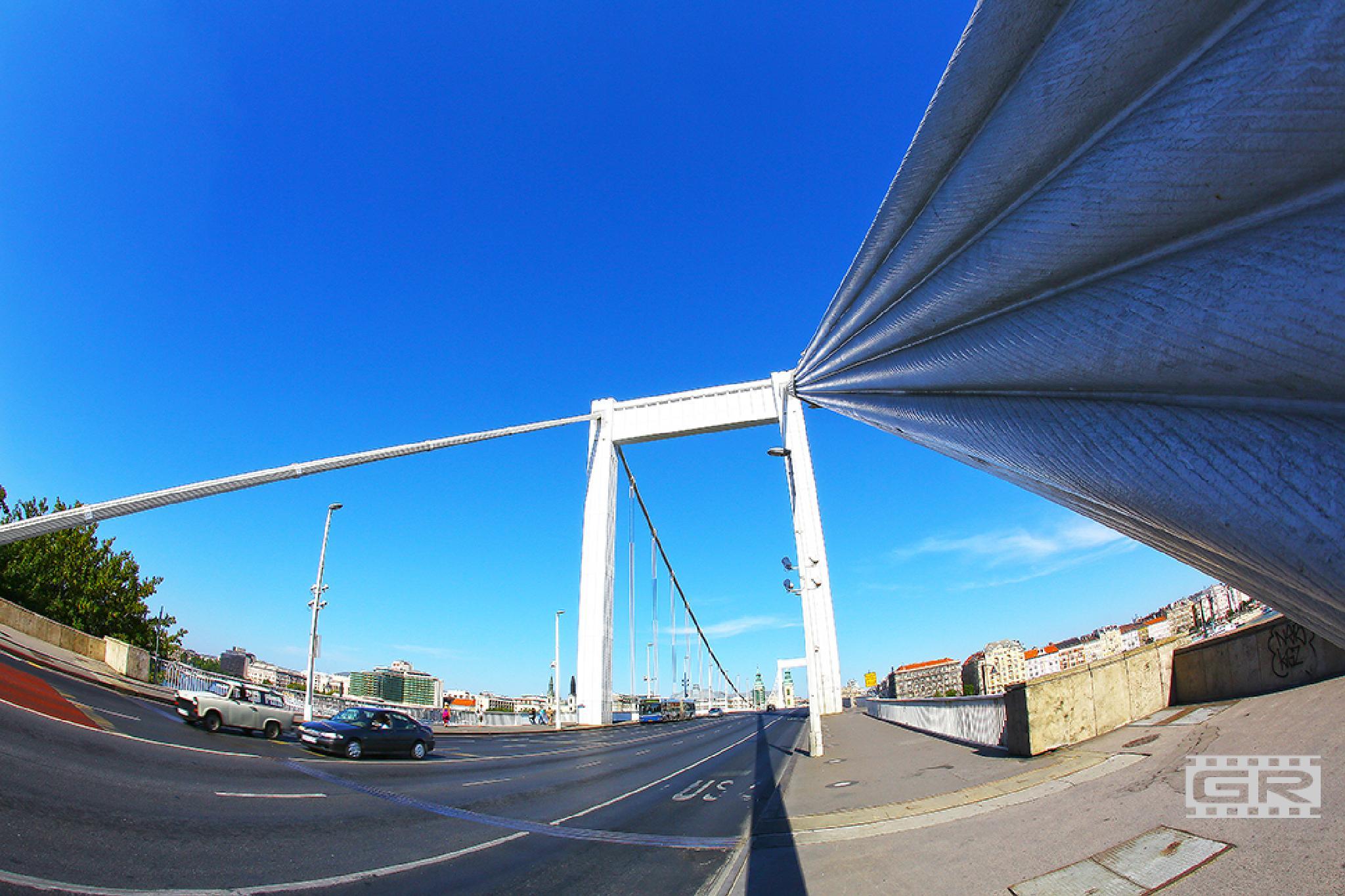 Elizabeth Bridge by Róbert Gecsényi