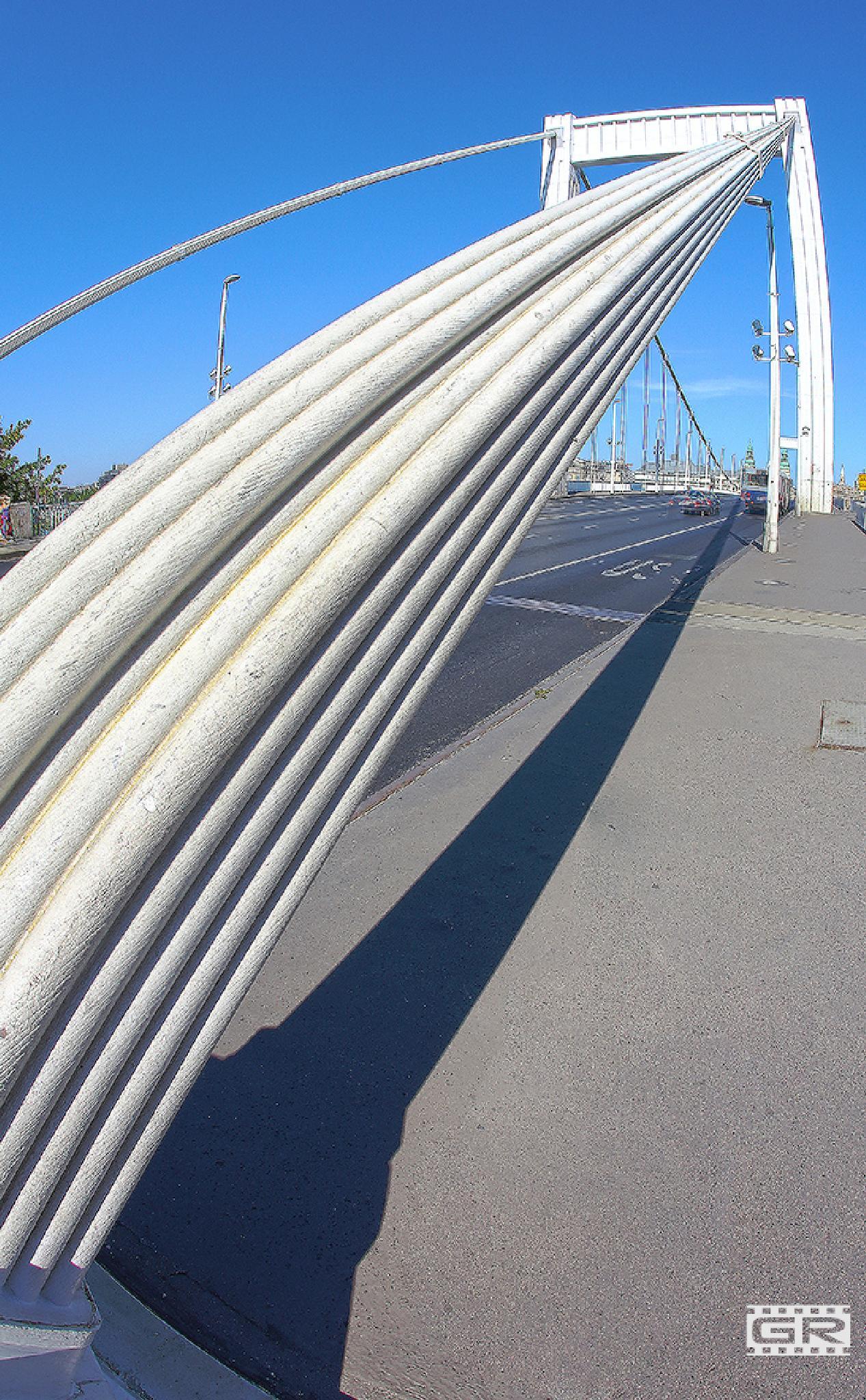 Elizabeth Bridge 4 by Róbert Gecsényi