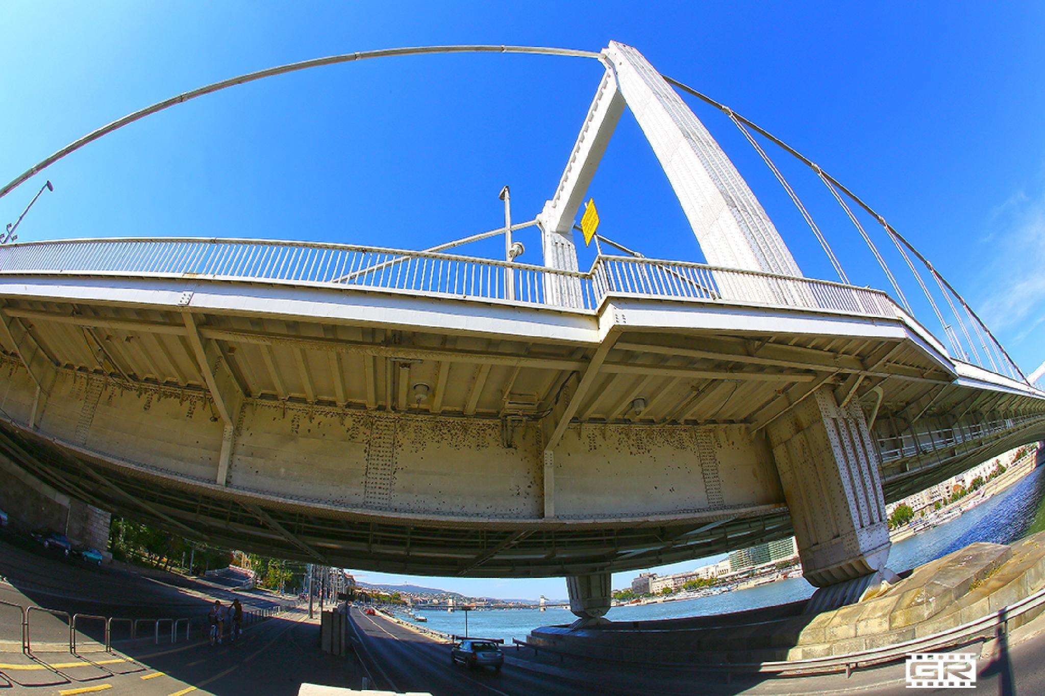 Elizabeth Bridge 10 by Róbert Gecsényi