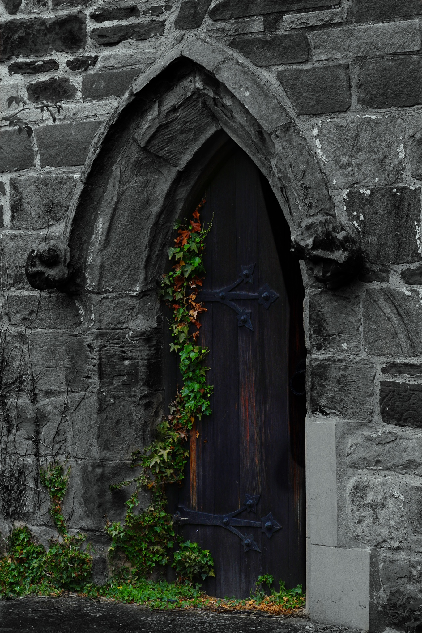 The door by Diane Lambert