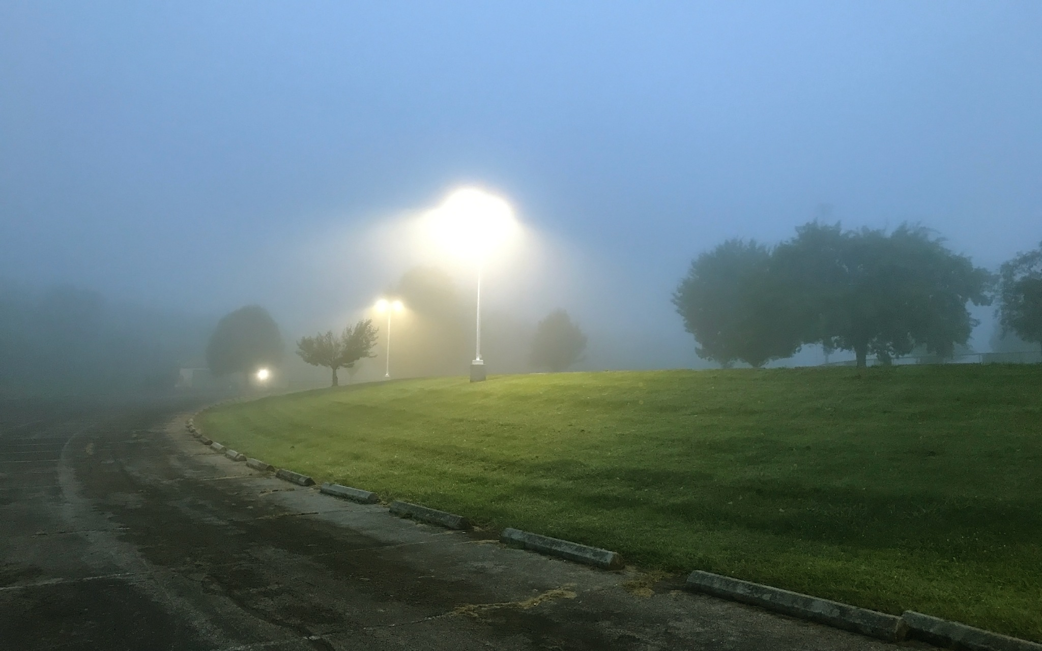 Morning Fog by John Hill