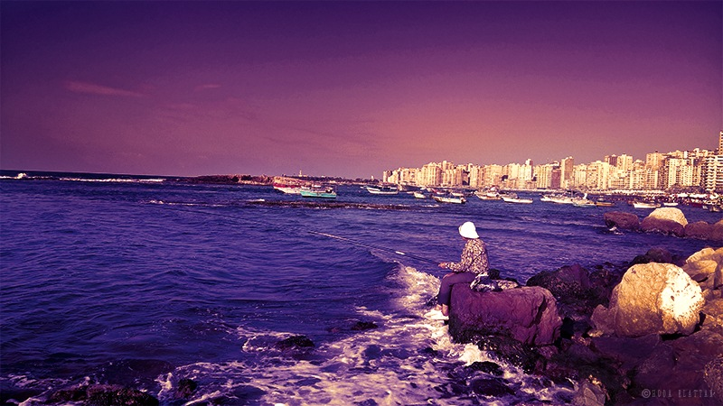 fisherman  by Hoda Elattar