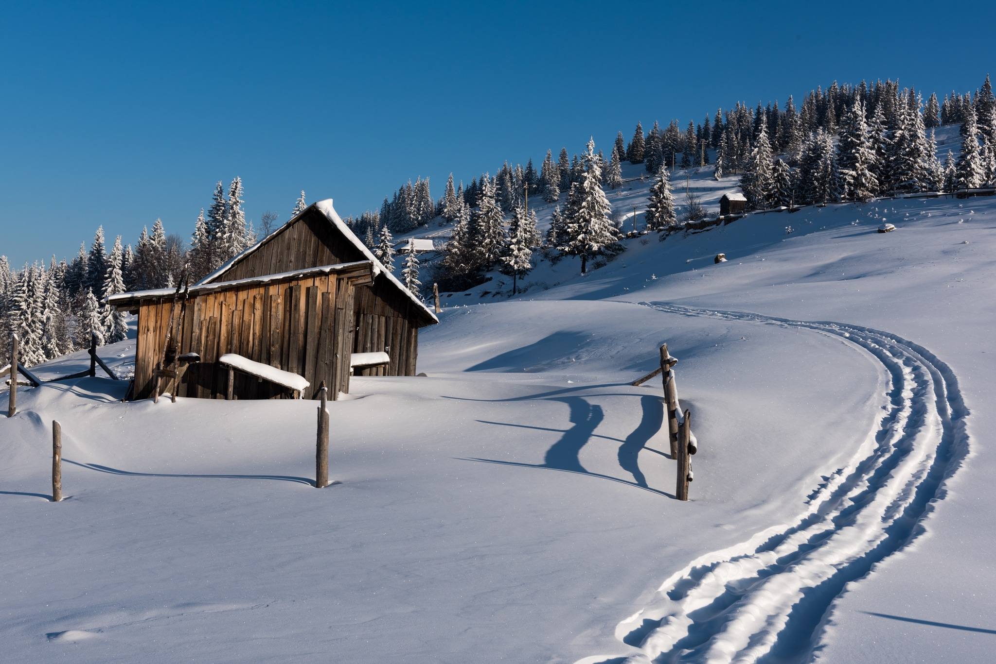 Tracks in the snow by MarkLanham