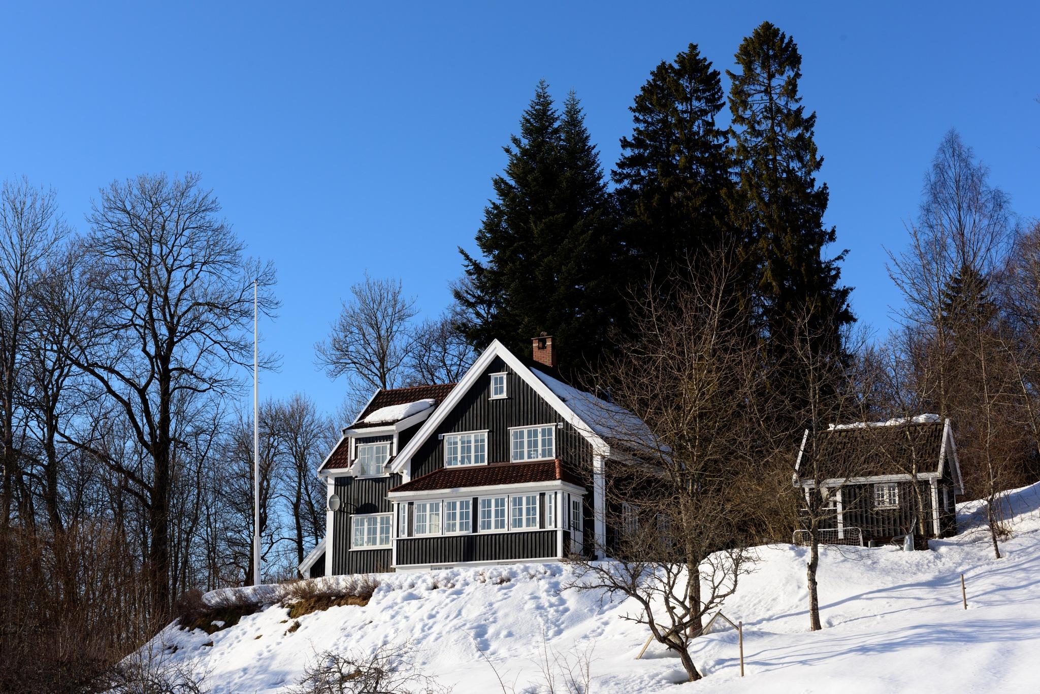 Hillside House by MarkLanham