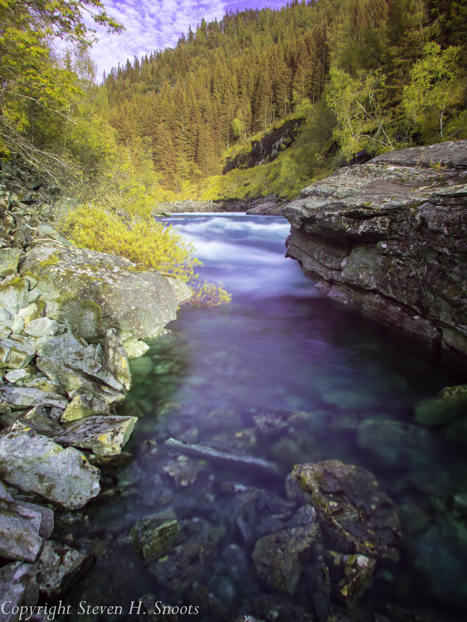 River side by Steven Harrison Snoots