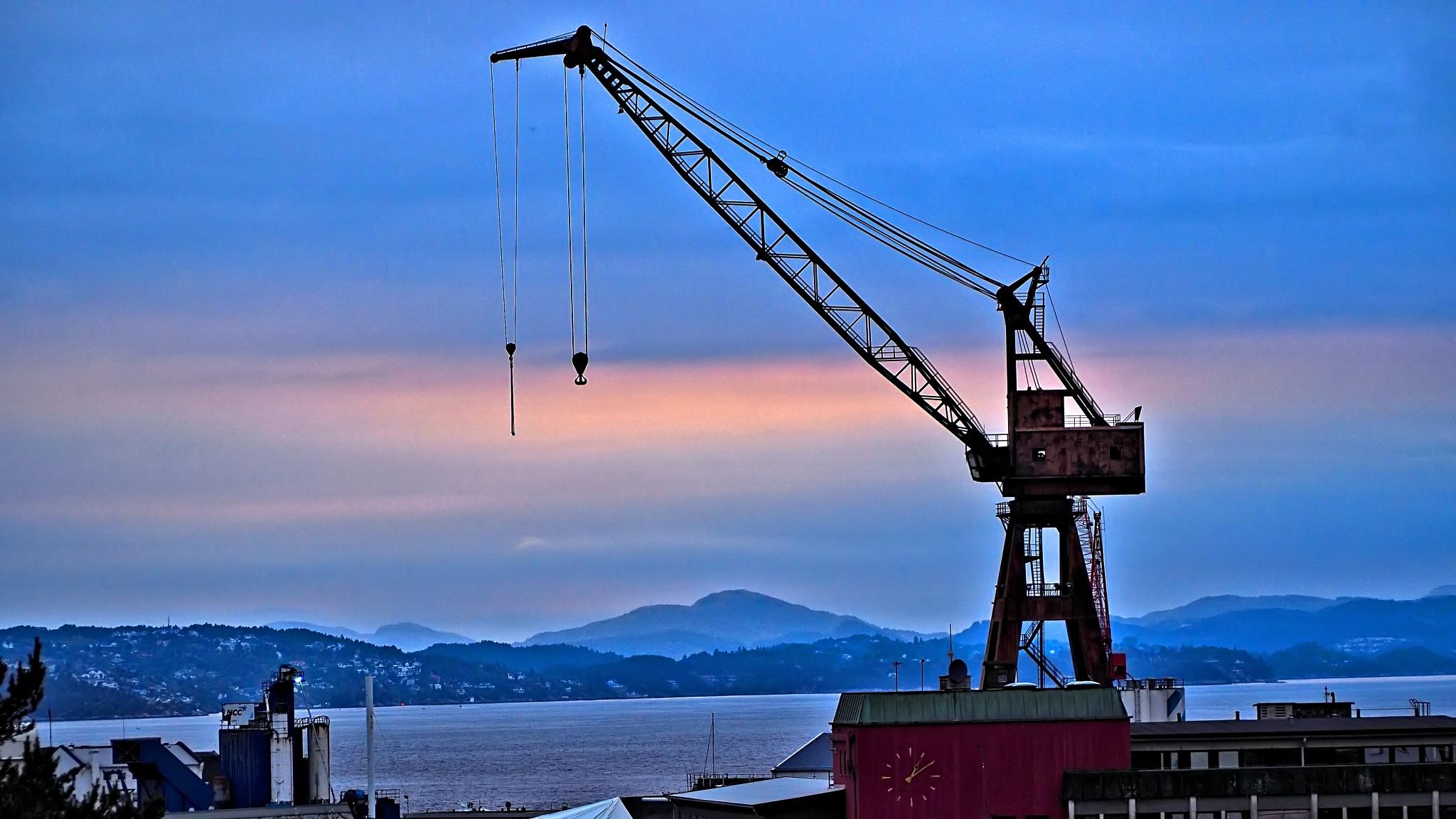 Lone crane by Steven Harrison Snoots