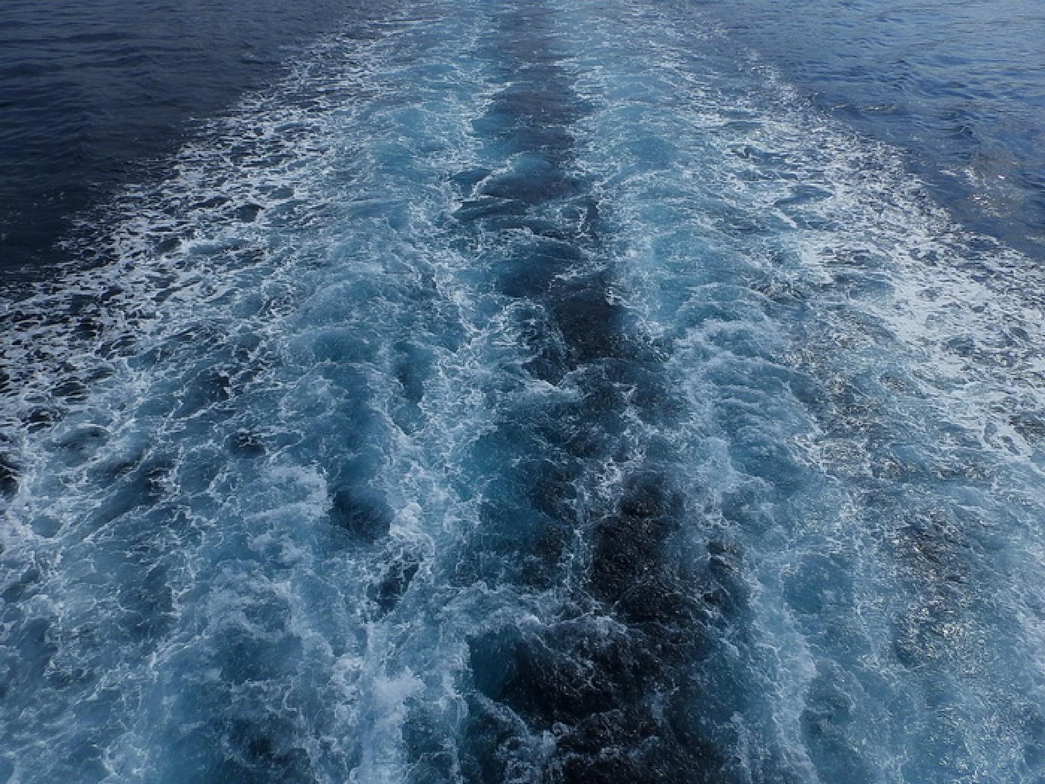 wave by Vladimir Curcin