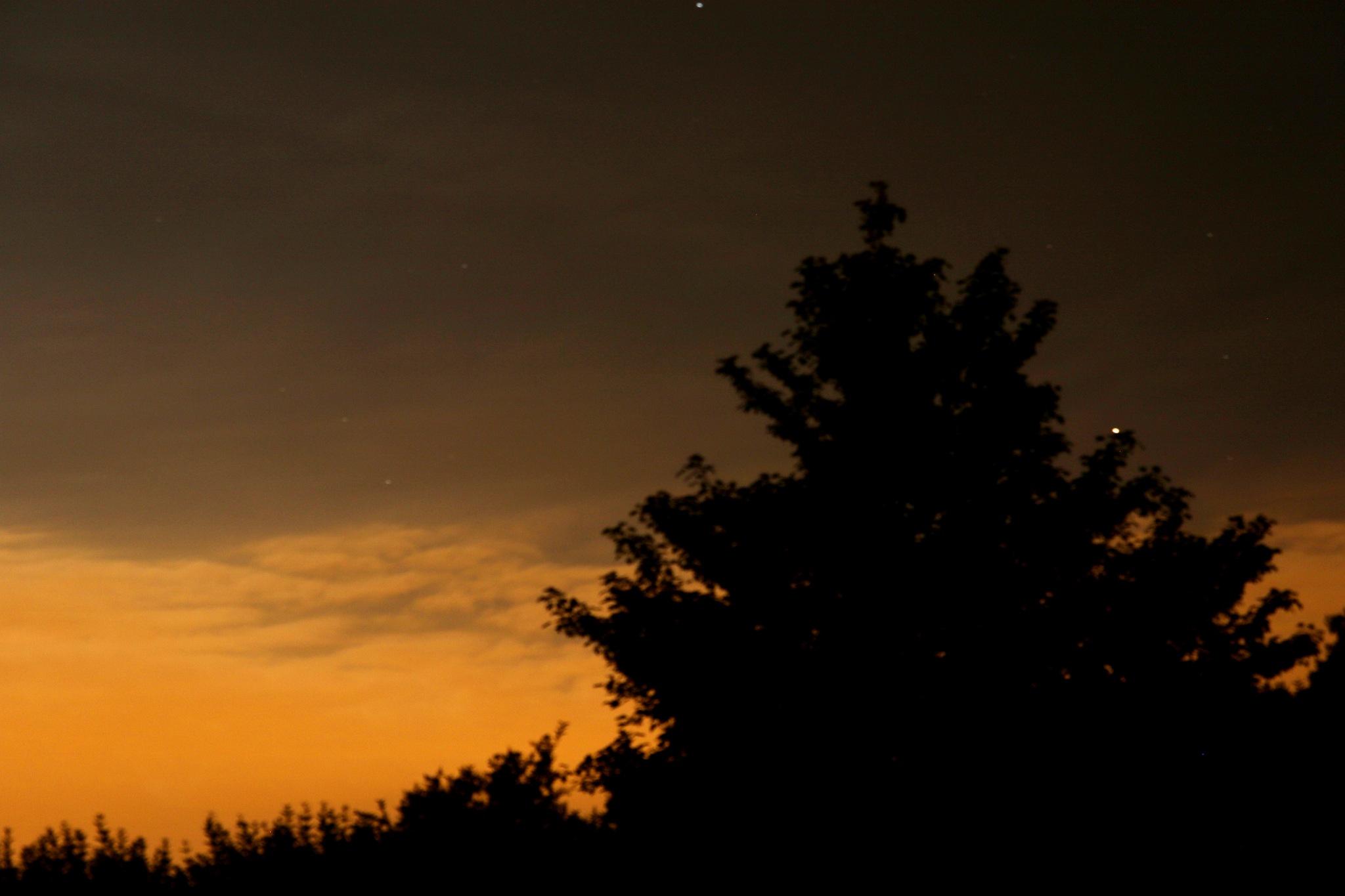 Stars at dusk by Mark Lawton