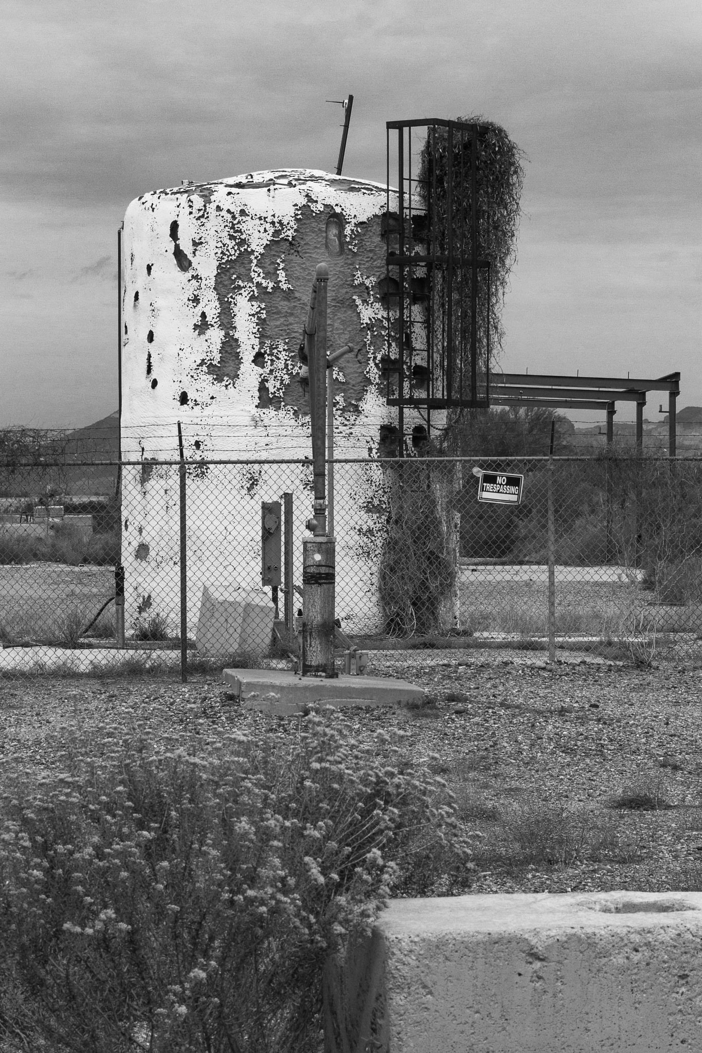 Abandoned Gravel Pit - Tank by kmcolbourn