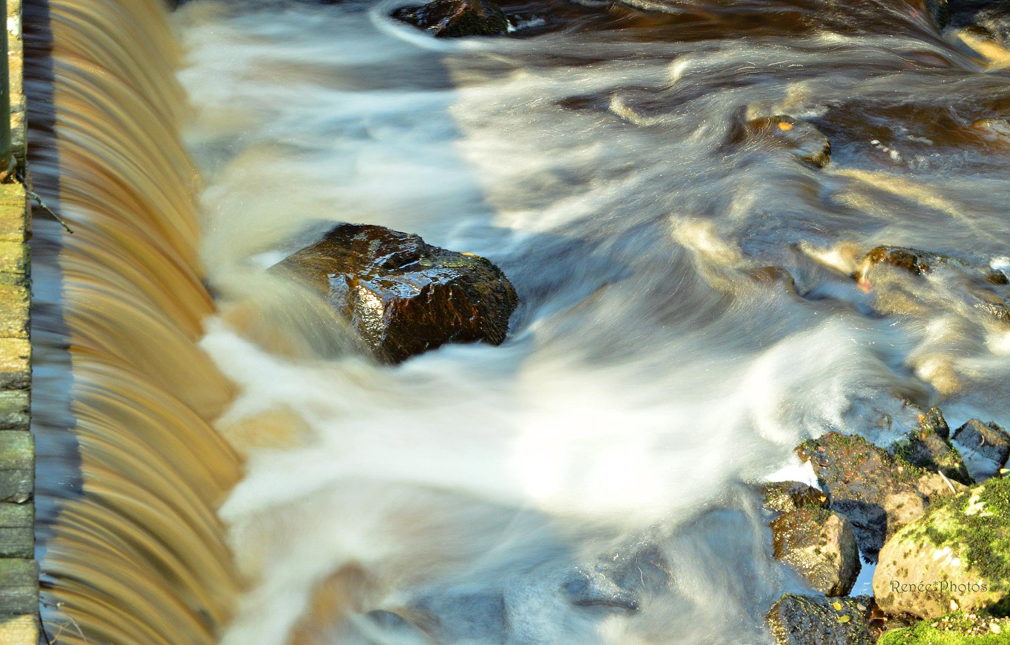 Flowing by Renée Köhler