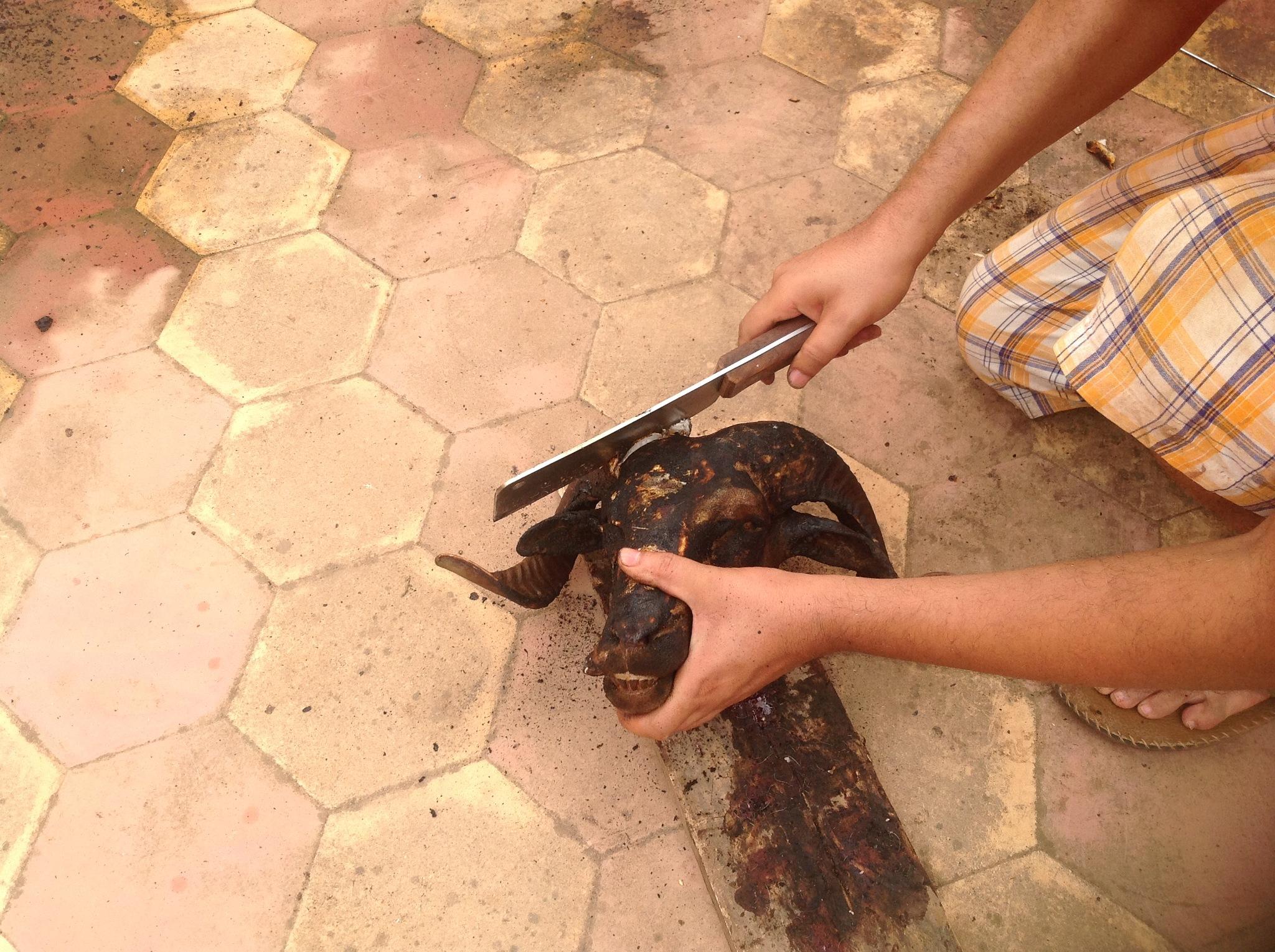 Couper les cornes du mouton  by Abdelhamid Hadouch