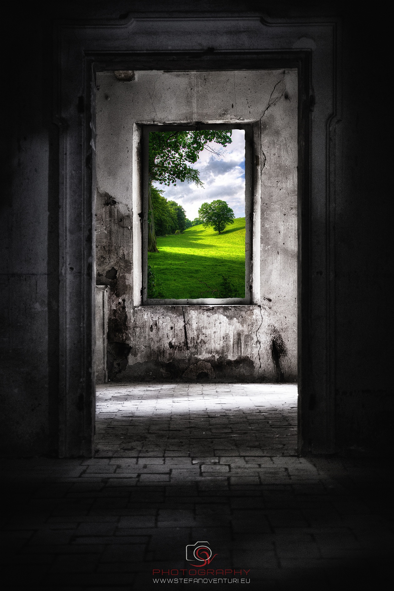 Life beyond walls by steve_photography