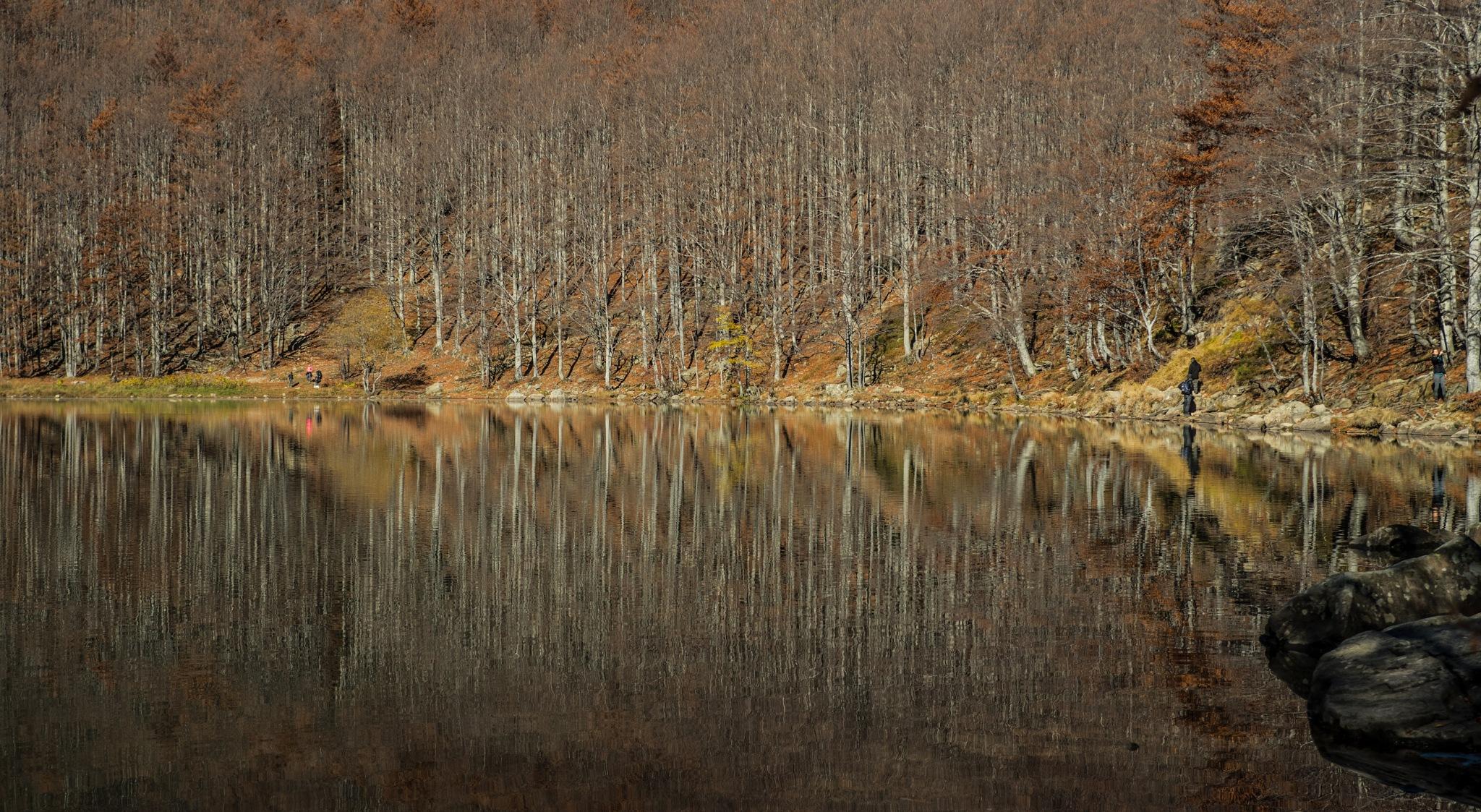 Reflexions by Daniele Vecchi