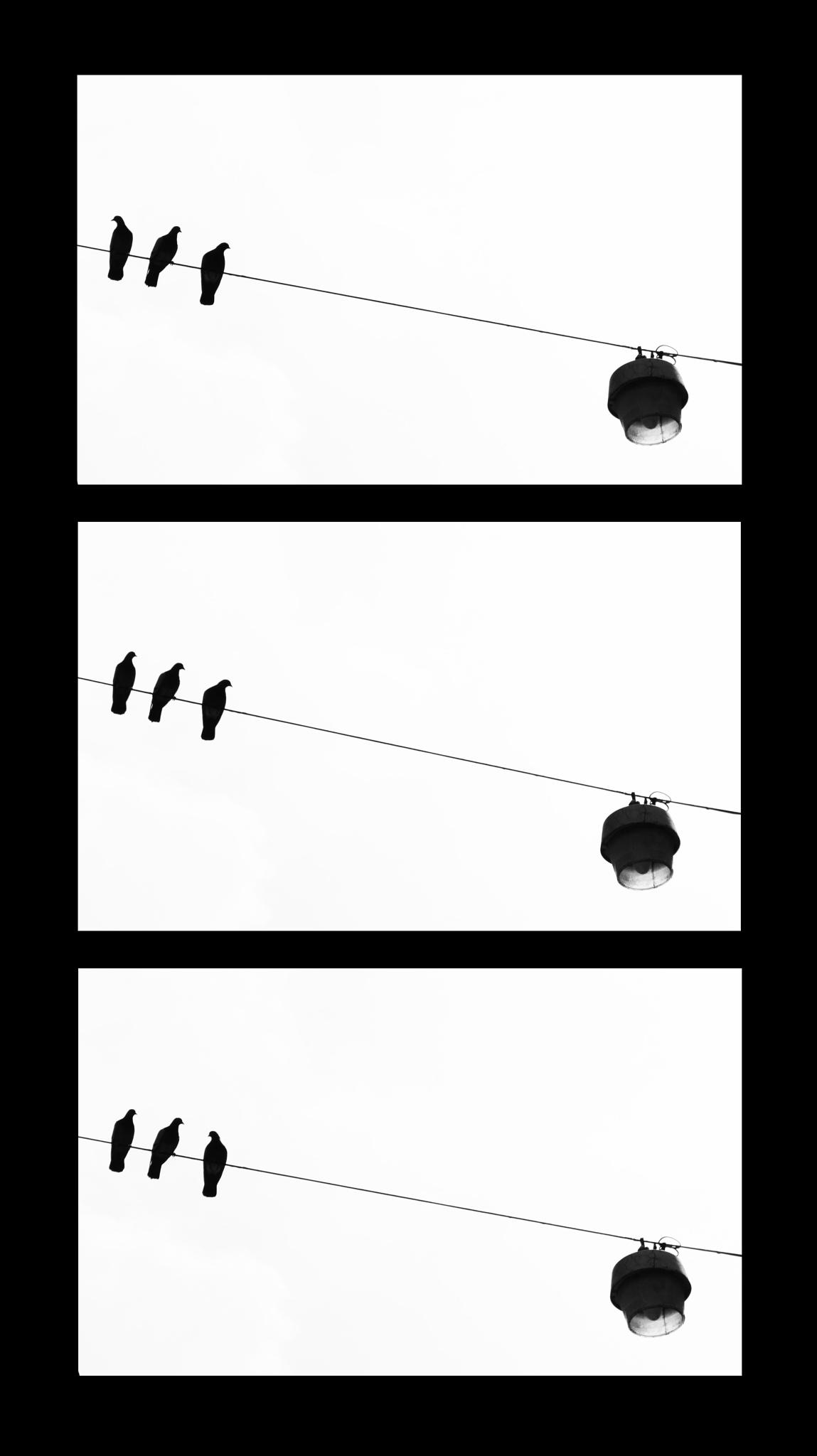 Wakefulness by Filippo Marini