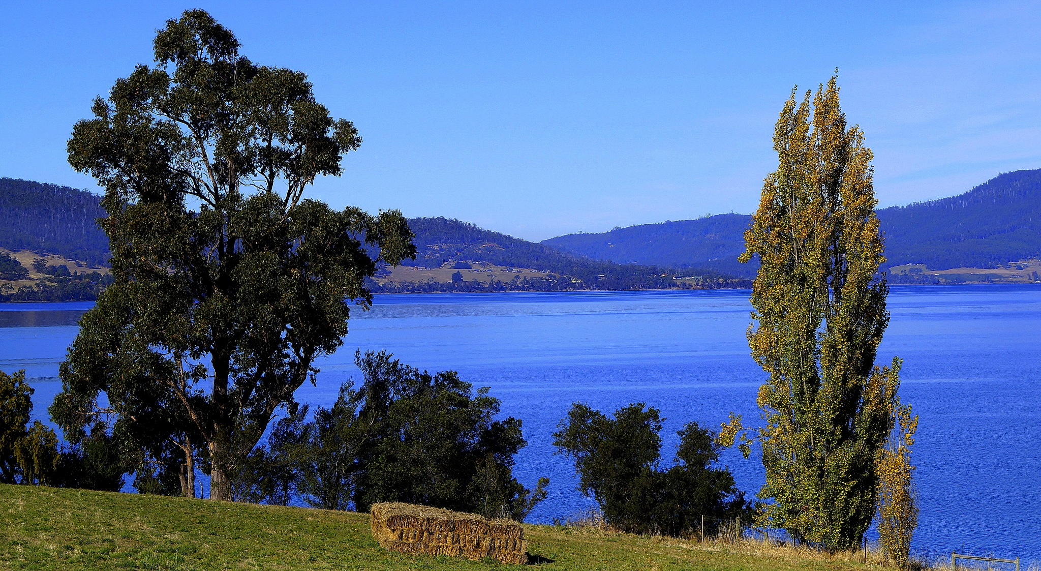The Huon River by PeterE