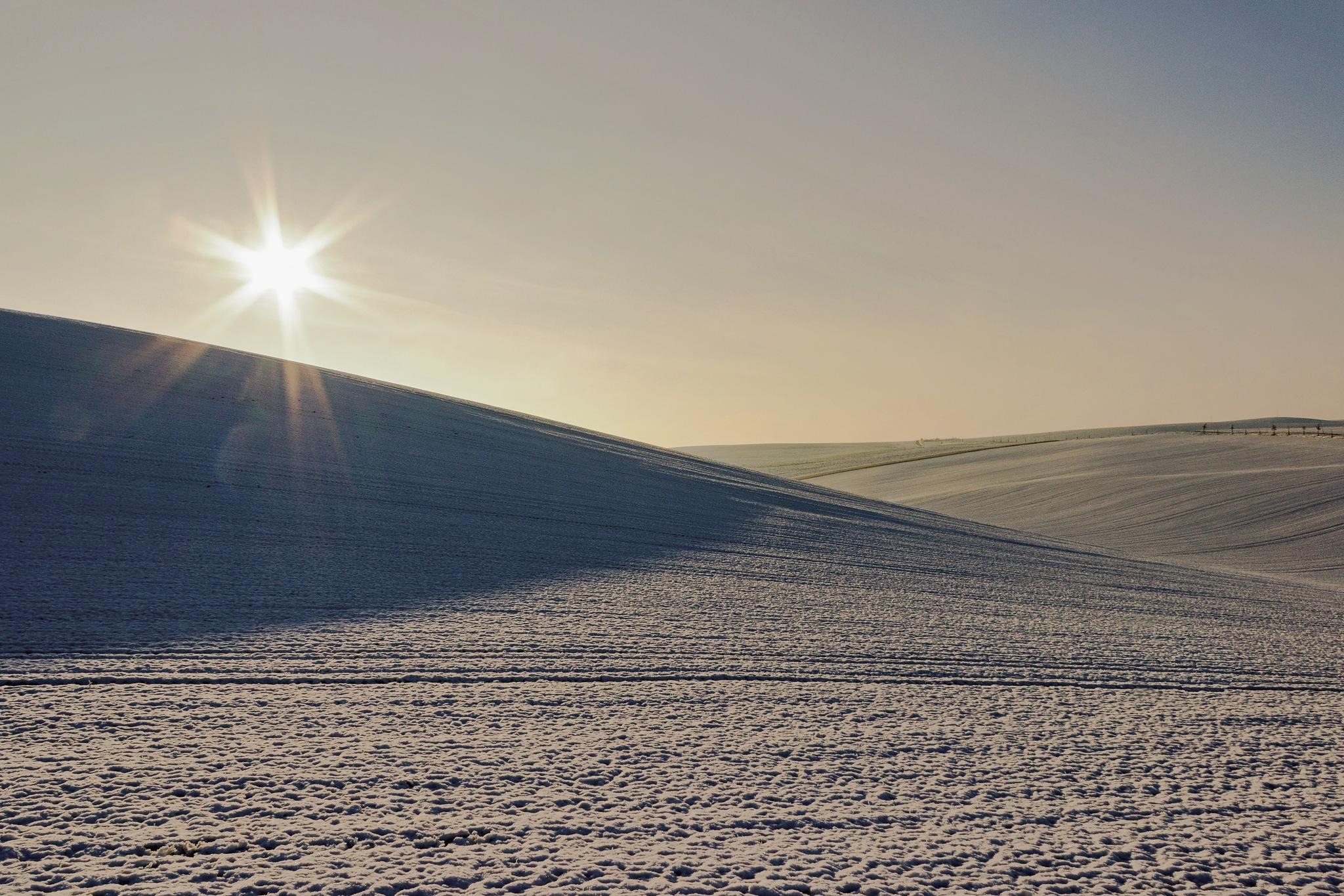 Morning in Moravian Tuscany by Josef Hasík