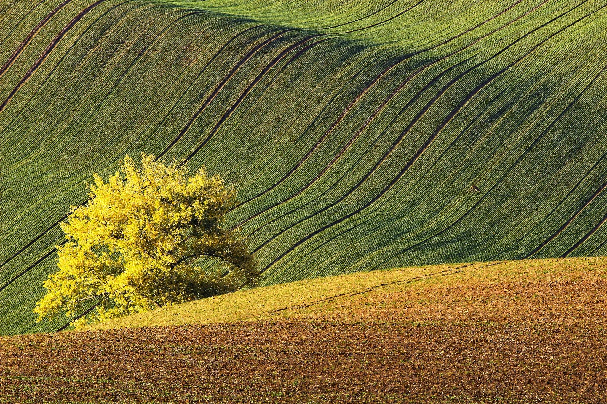 Surroundings of Strazovice by Josef Hasík