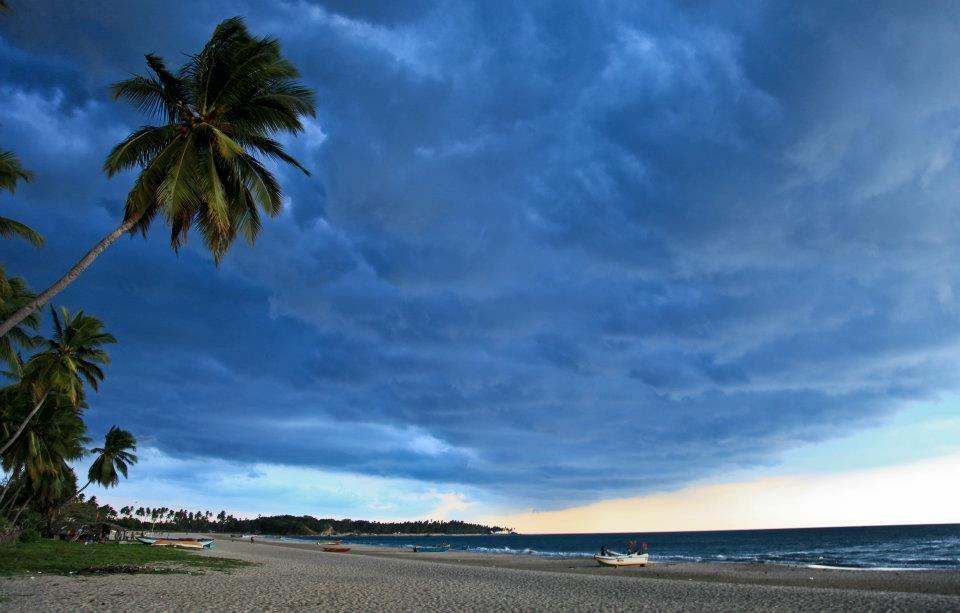 tropical storm by Mikhail Minakov