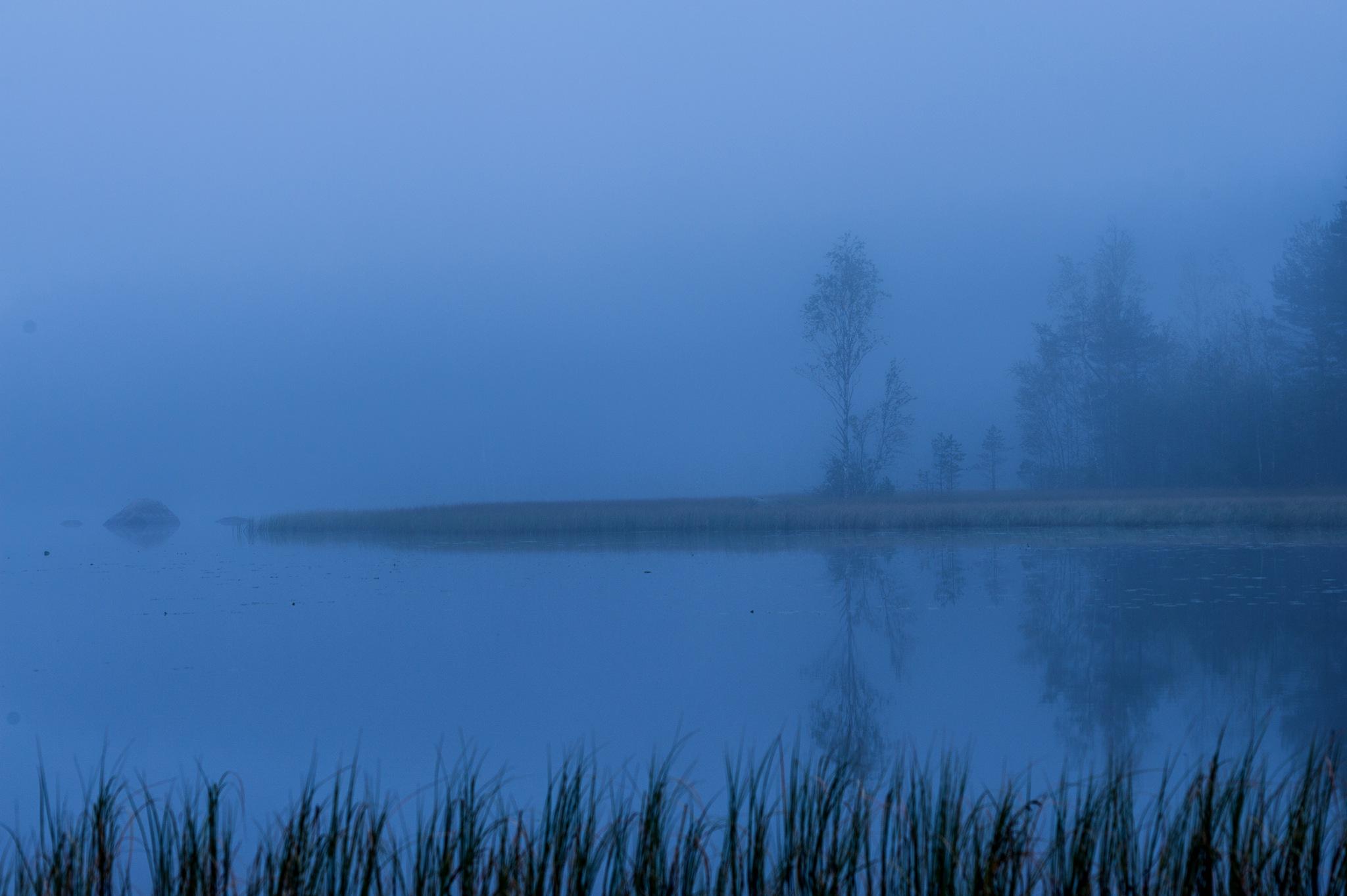 Morning - Aamu by Pauliina Kuikka